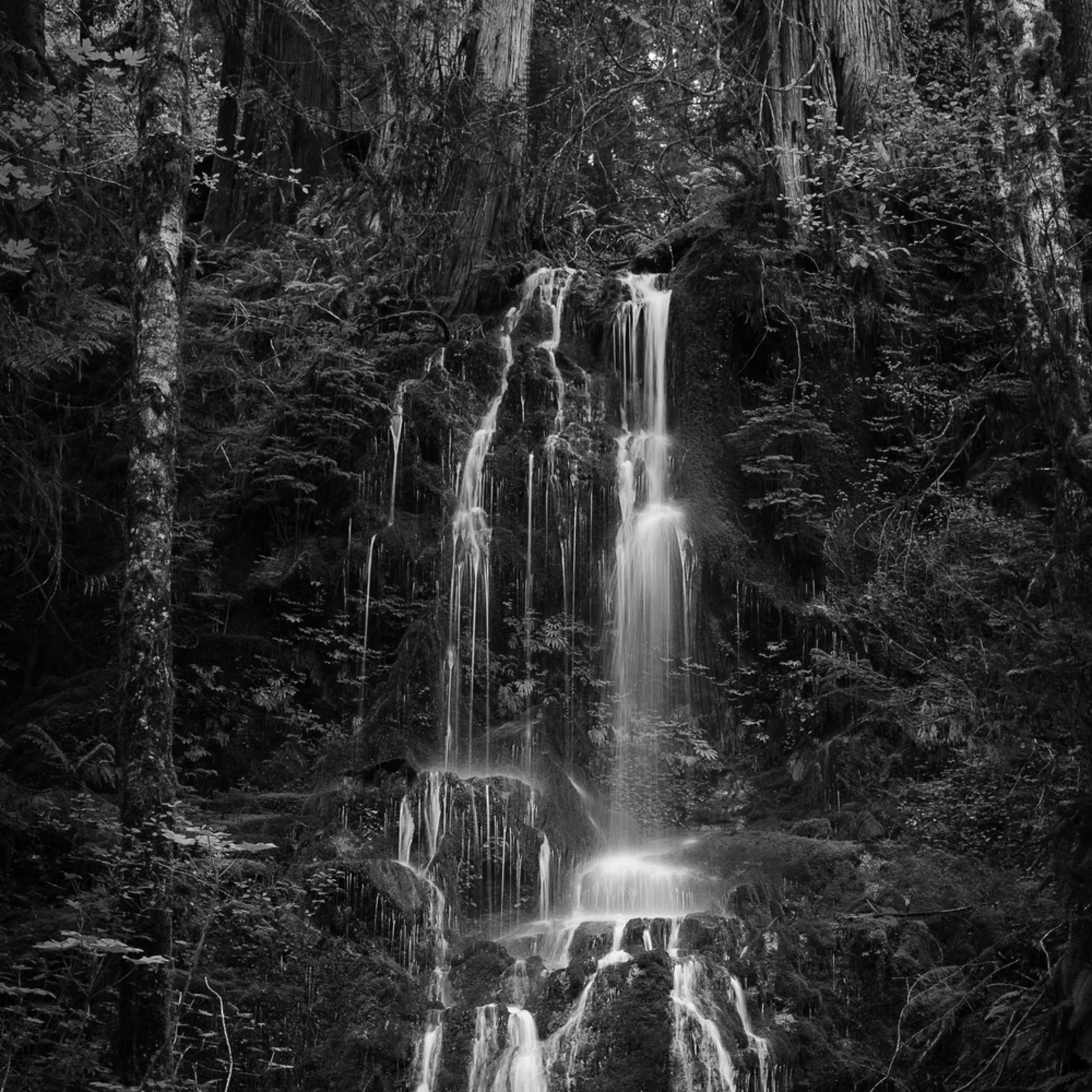 Springtime waterfall olympic national park washington 2016 cnpxsr