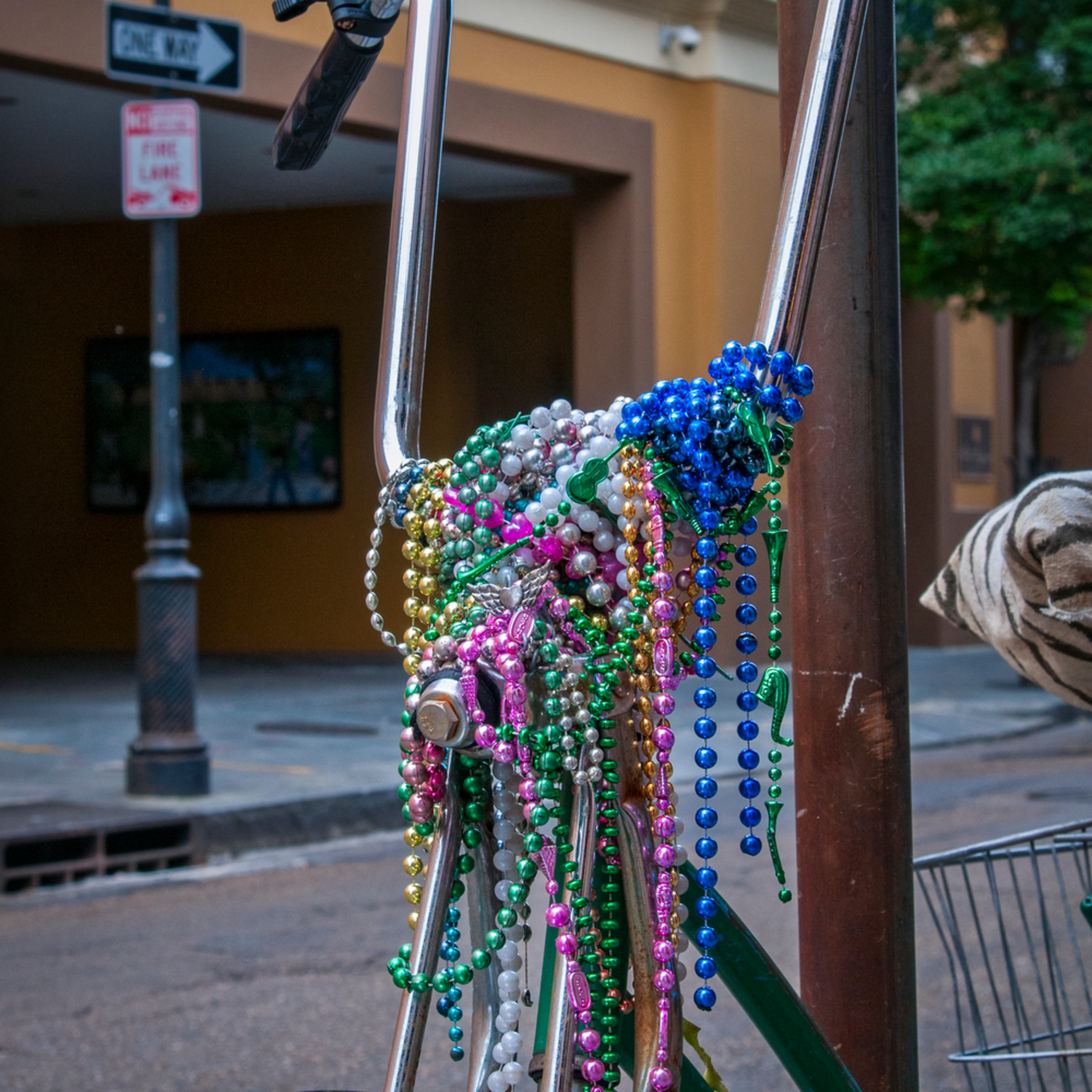 Andy crawford photography mardi gras bicycle r8gfi6