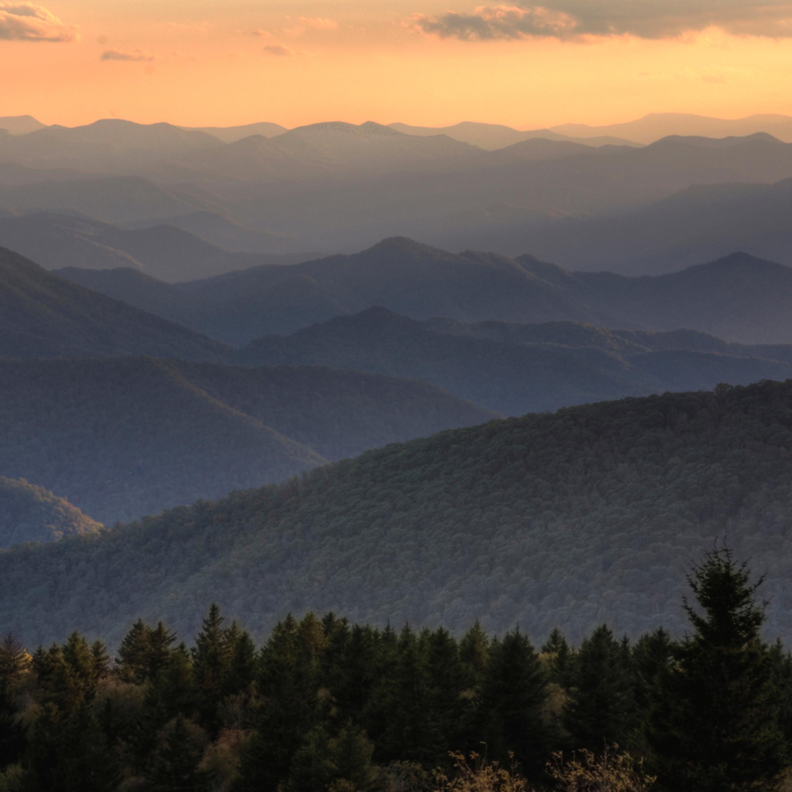 Mountain vista dhfrbs