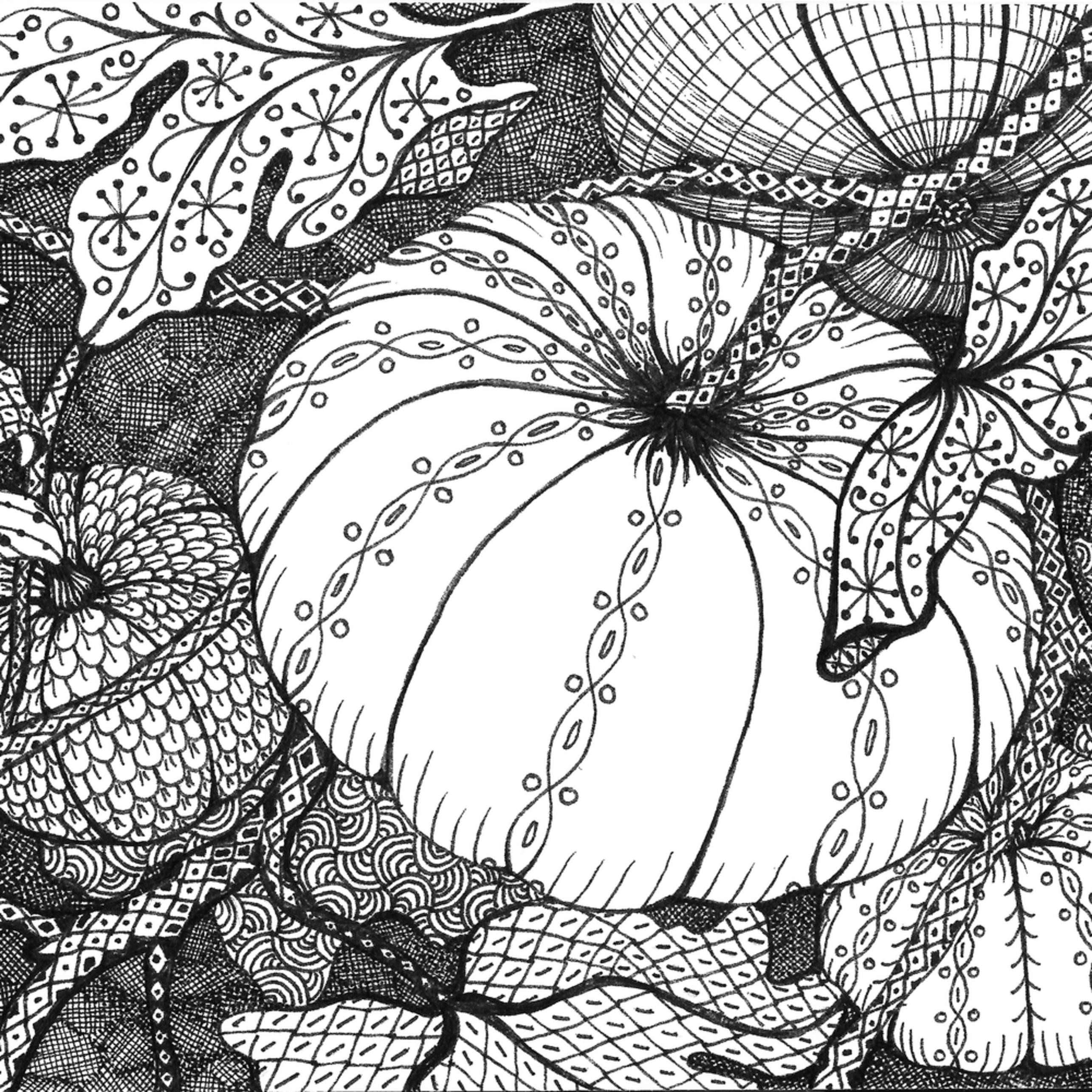 Pumpkin 2 august b2di2g