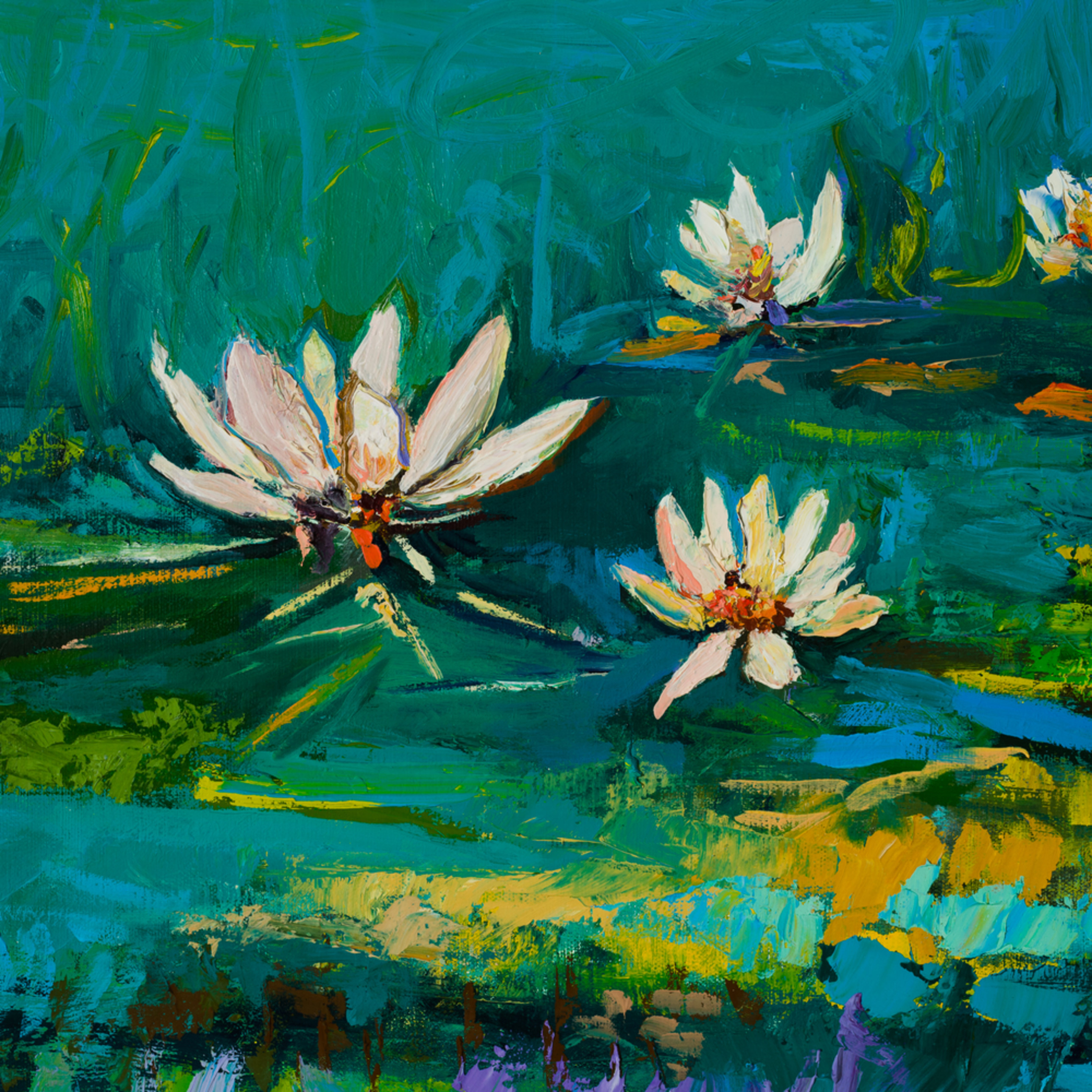 Tracy lynn pristas lotus flowers  ryxxc1