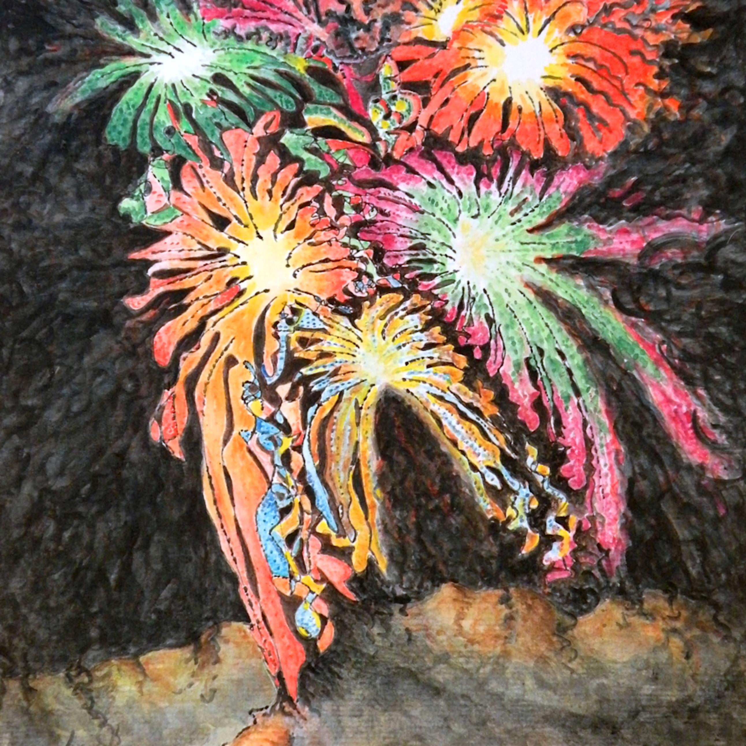 Fireworks man 8 5 x 11 lobmqs