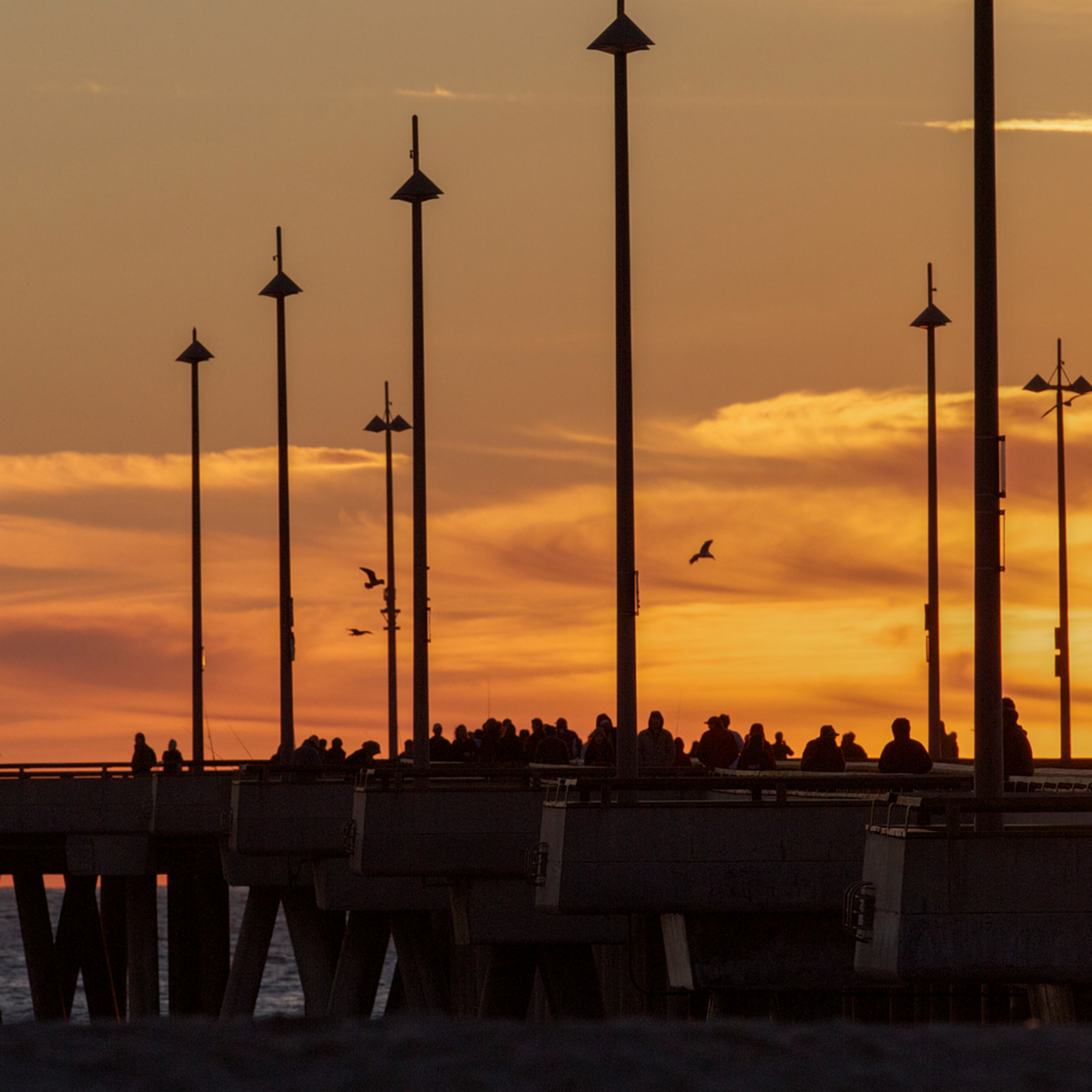 Venice pier silhouette gtrefy