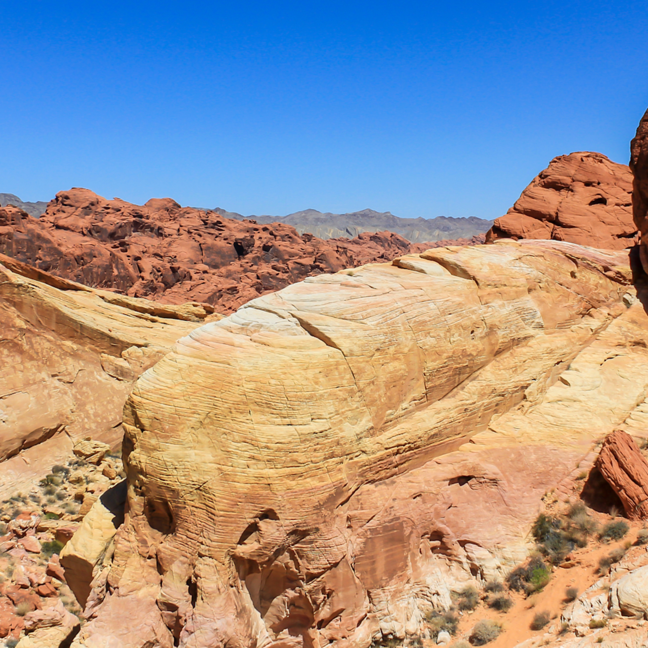 Valley of fire wlhhsn