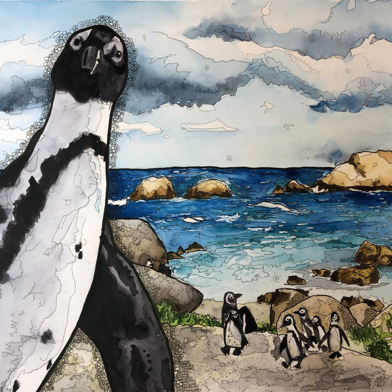 Africanpenguin nxzj5l