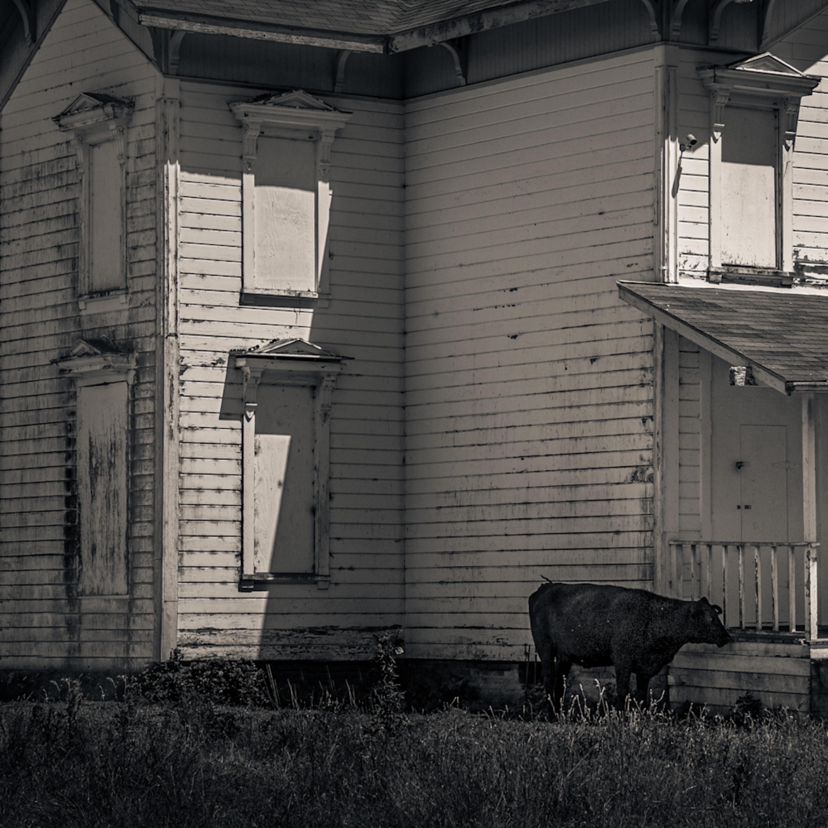Abandoned house pt reyes gechn8