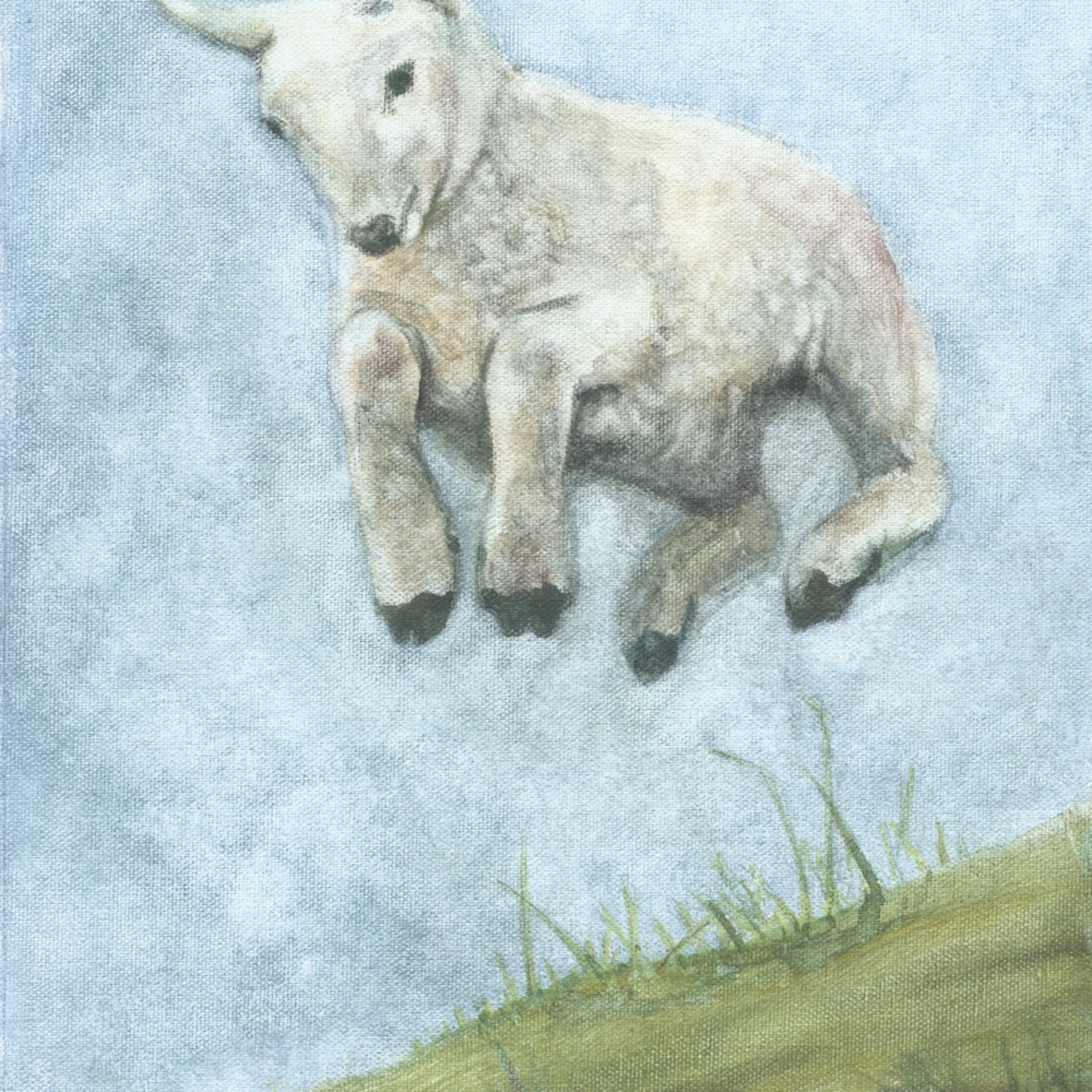 Lamb leaping fjhyqj