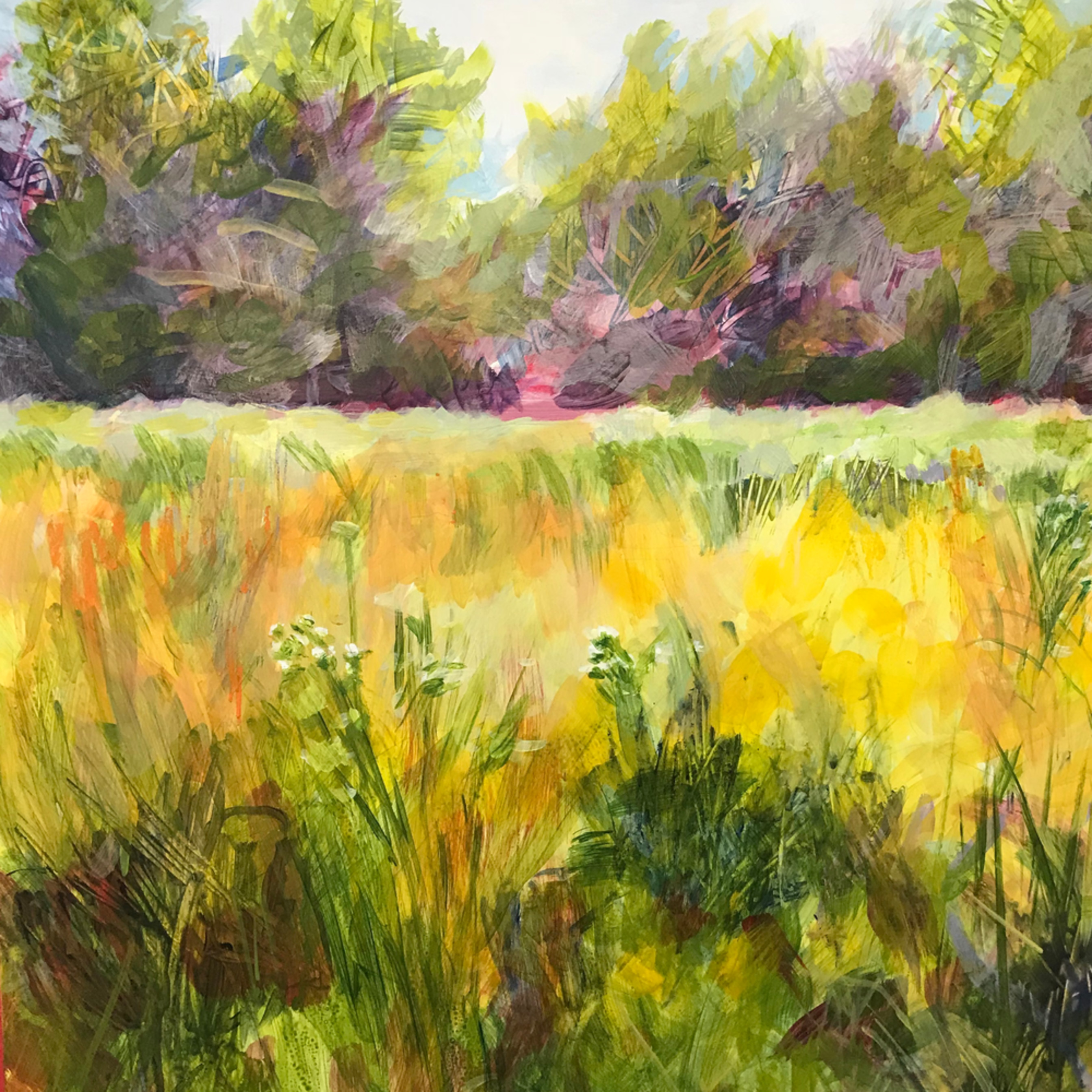 Holtb field in june acrylic 16 x 20 xy6f0z