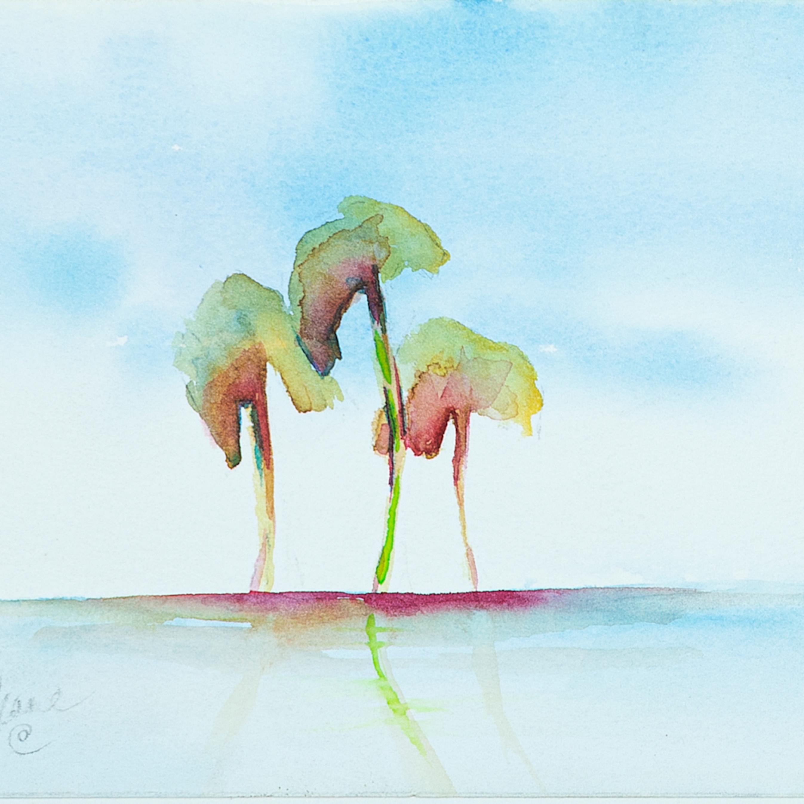 Three palms u1v5ey