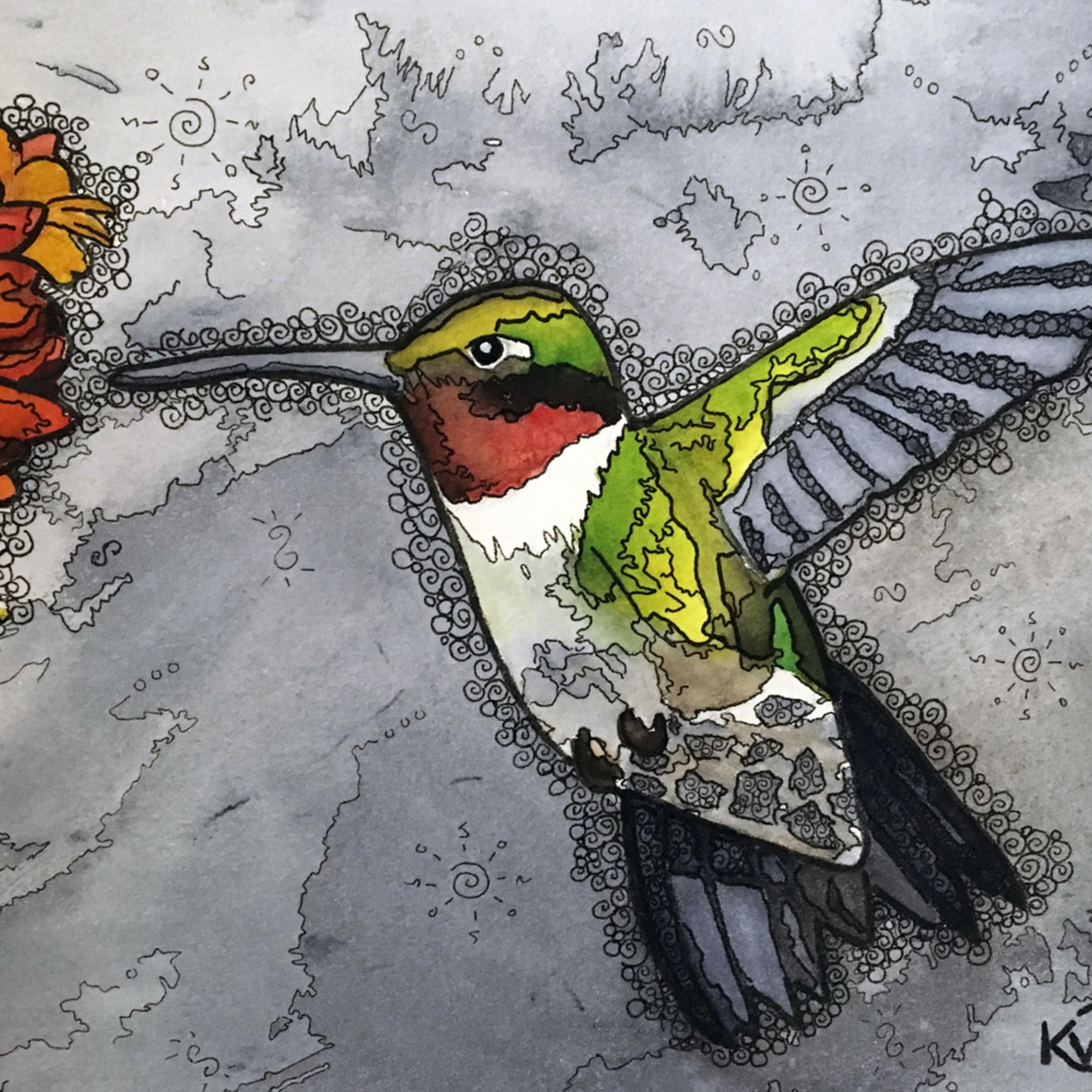 Hummingbird4 txhtvb