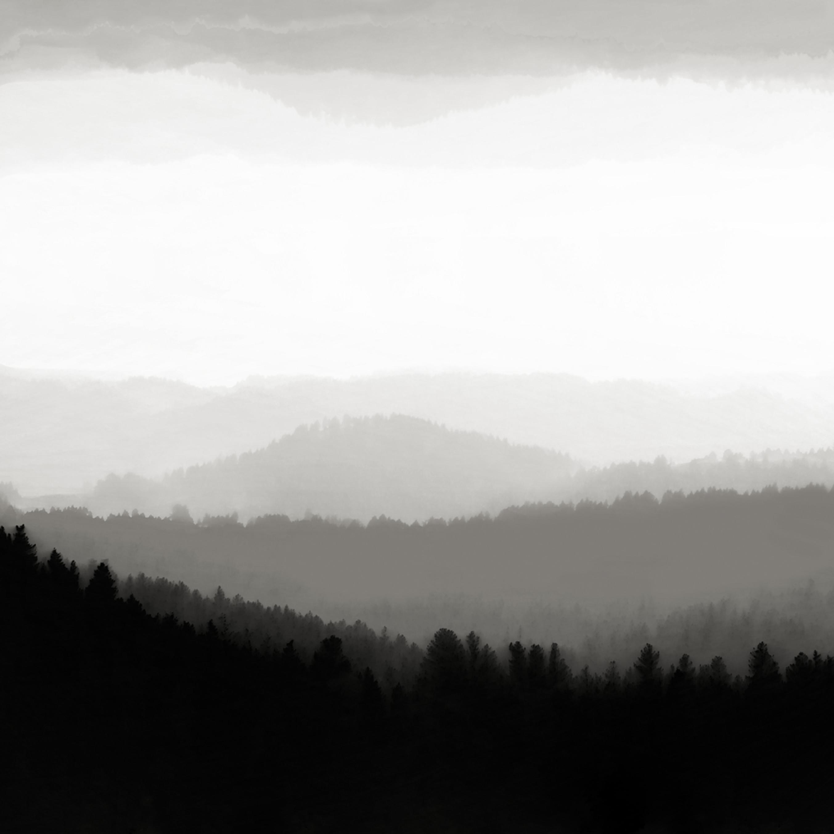 Morning fog ocpega