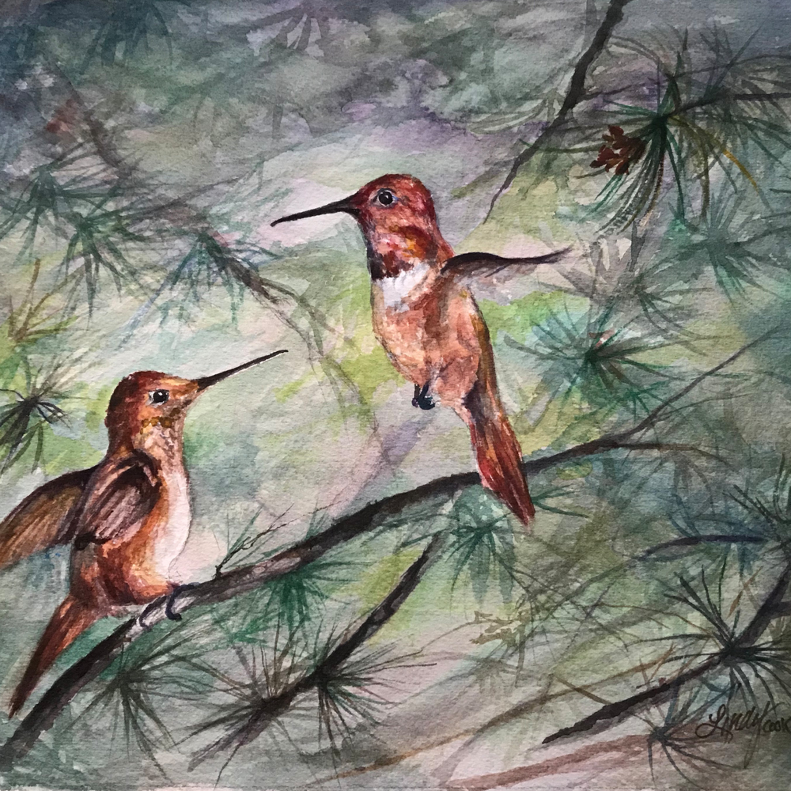 Comparing wing spans 8x10 watercolor lindy cook severns hal7yf