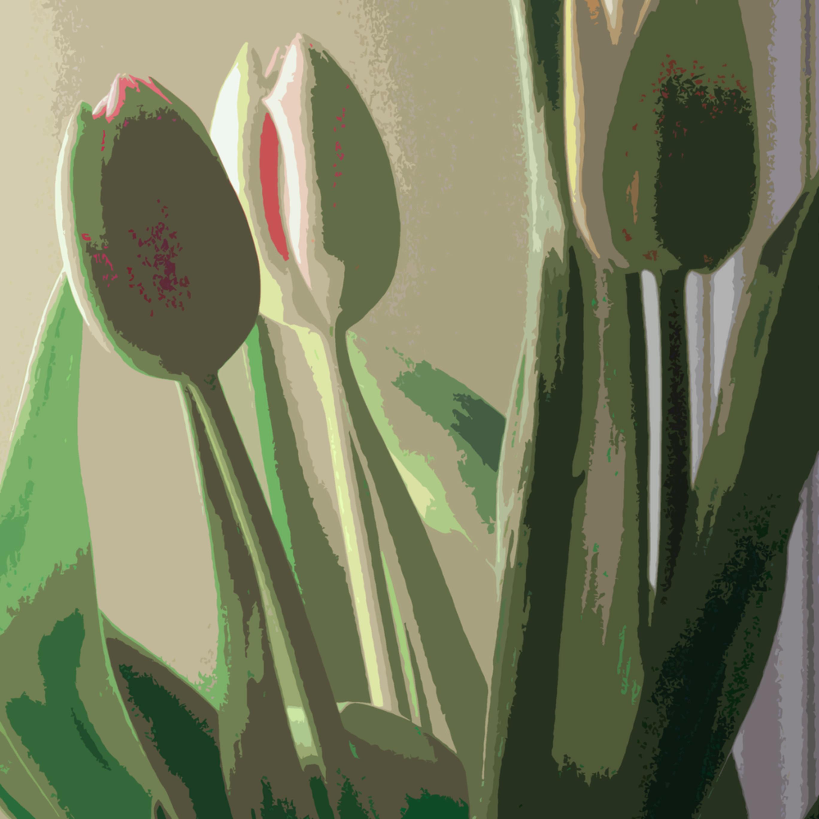 Tulips 1 grahic hxcmqn