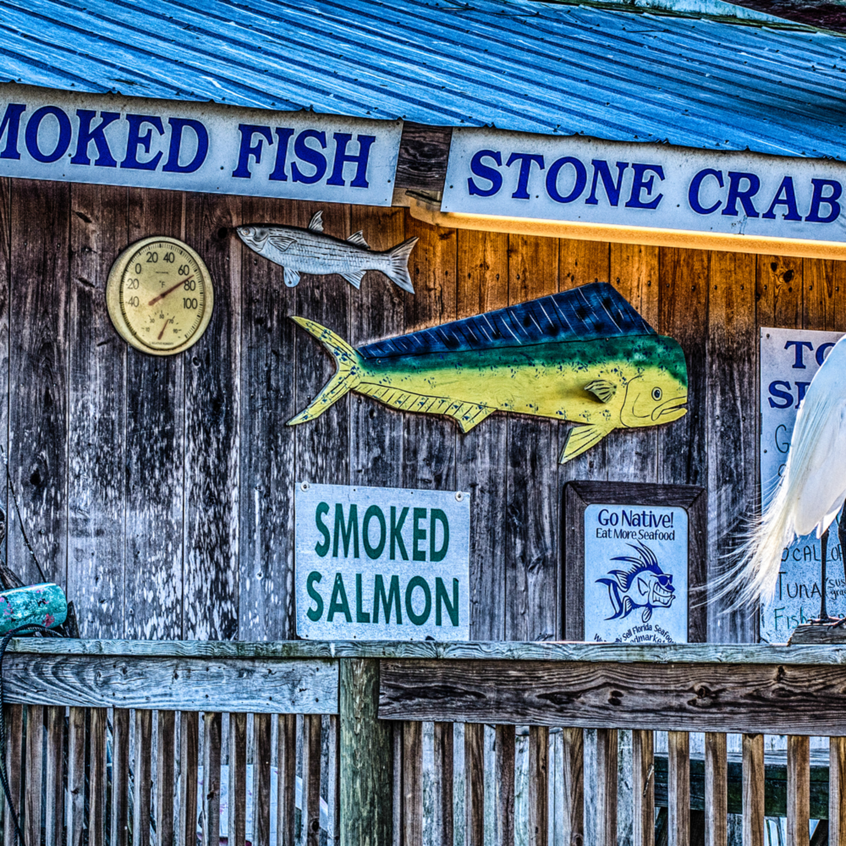 Cortez fish market u8q1fg
