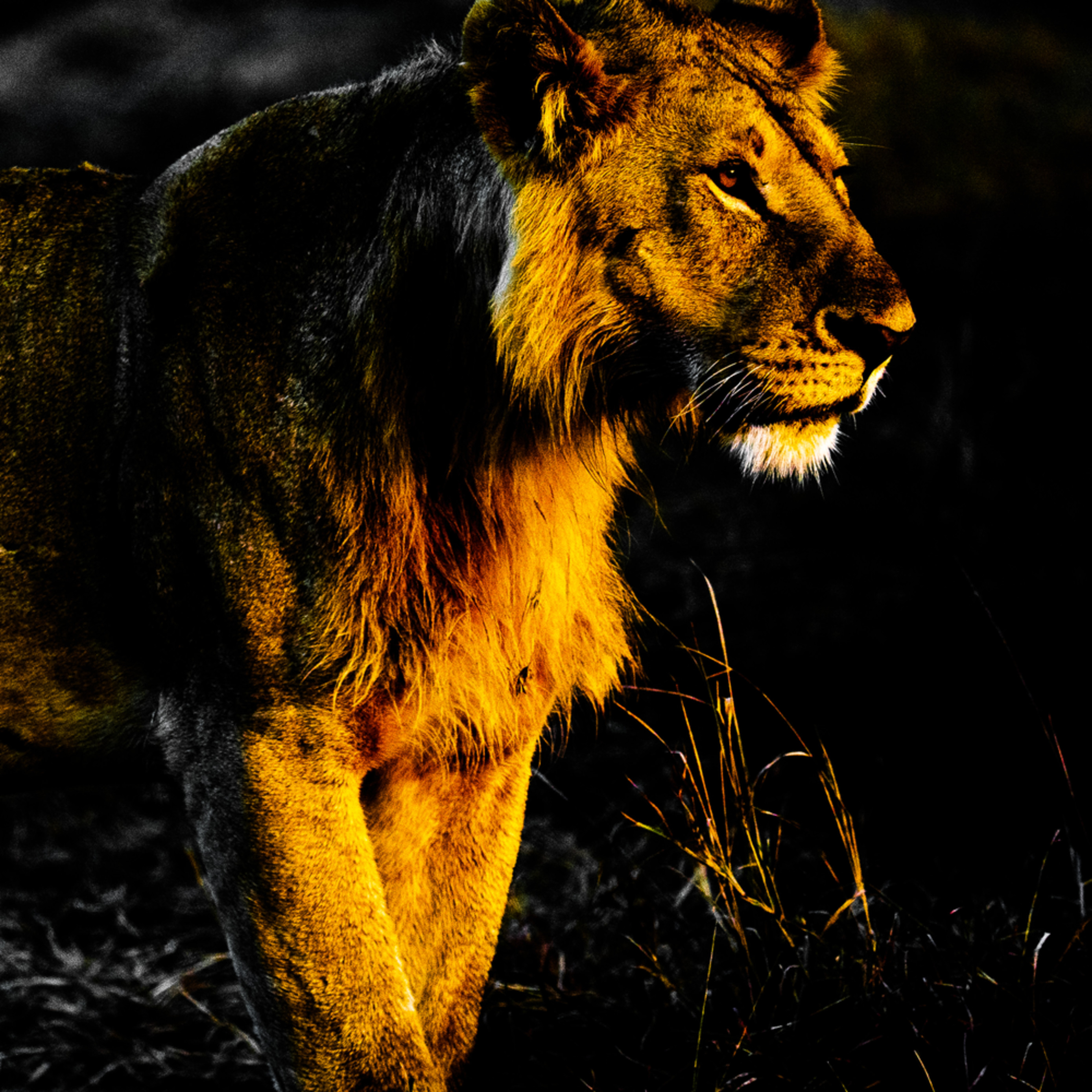 Africa   kenya august 08 201807117 z7wk95