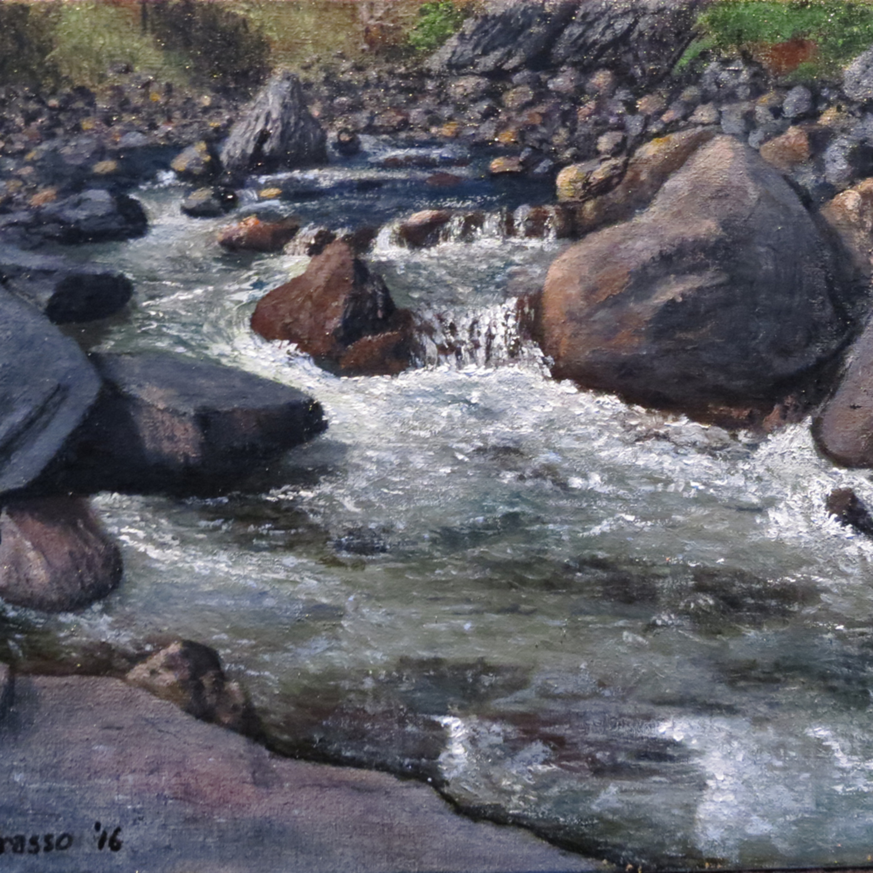 Poudre river wswgwp