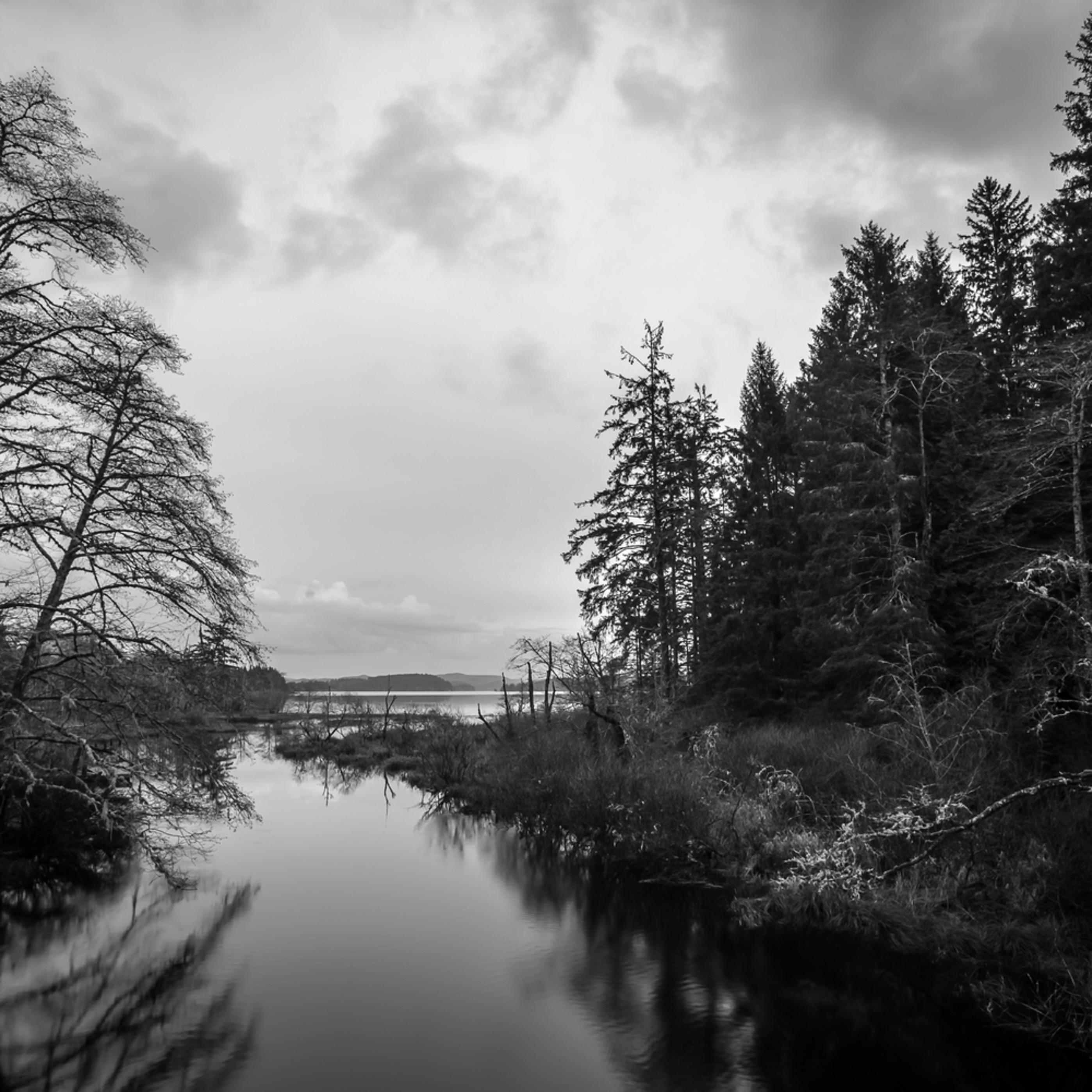 Headwaters ozette river olympic national park washington 2016 zm3xuc