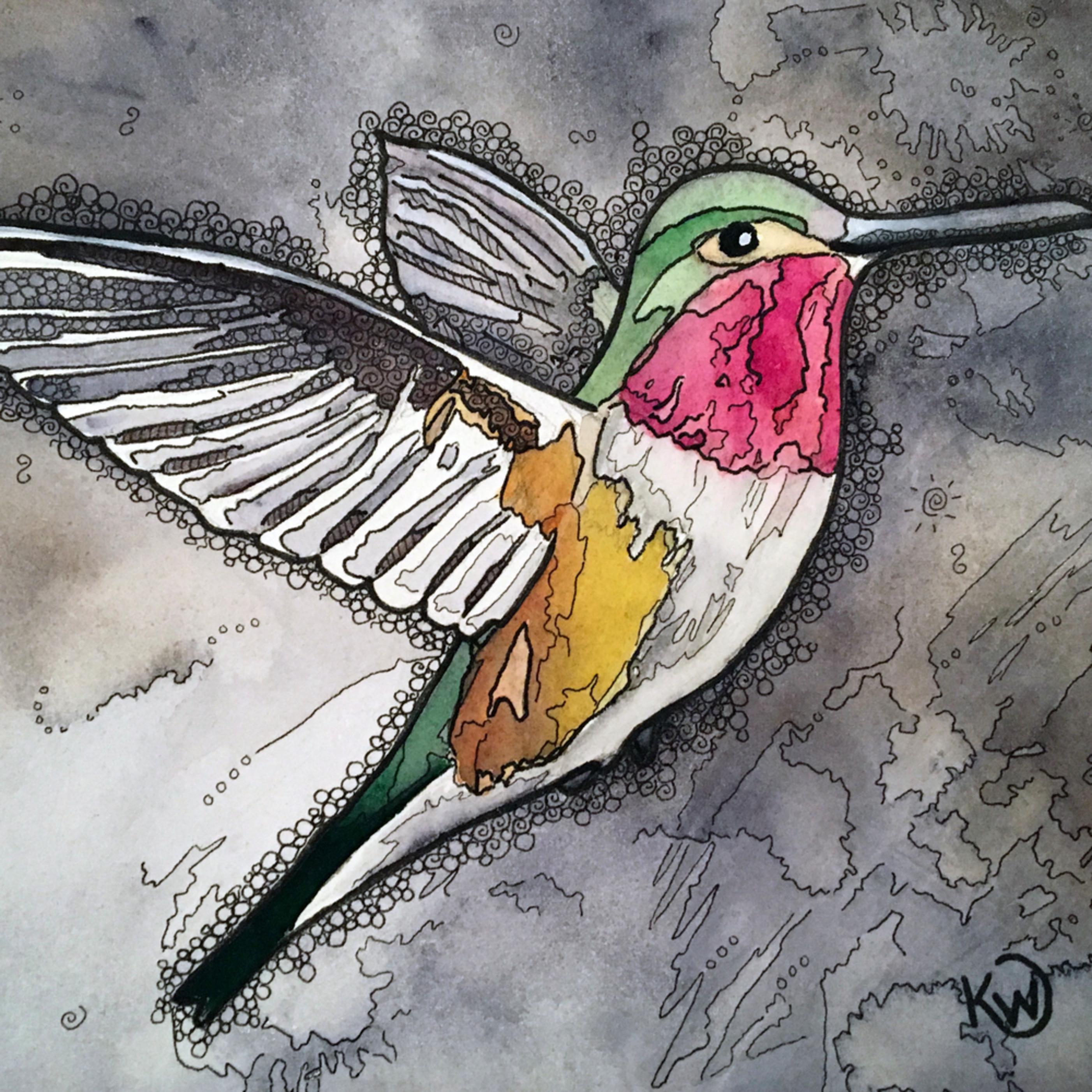 Hummingbird2 sscd0i