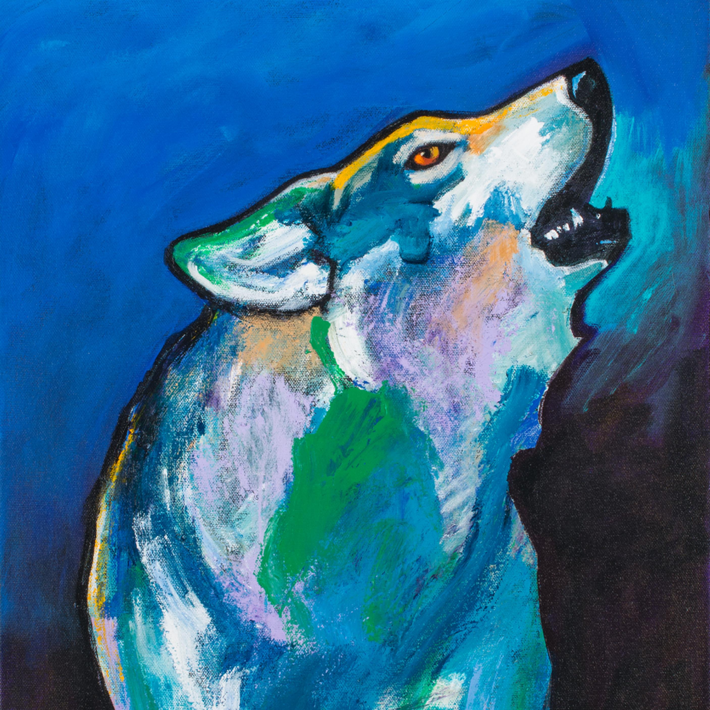 Alpha wolf calling 004 ugcwsu