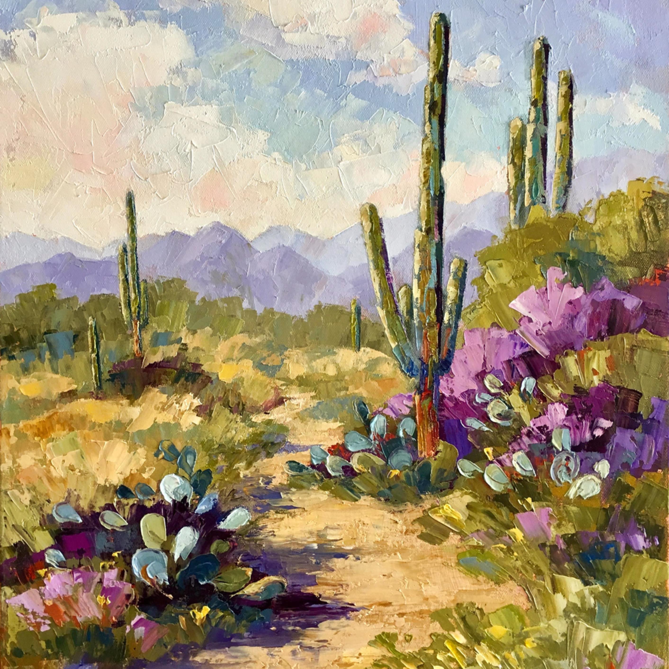 Saguaro trail 72dpi 3500px gimp colbal exp adjs crvldl