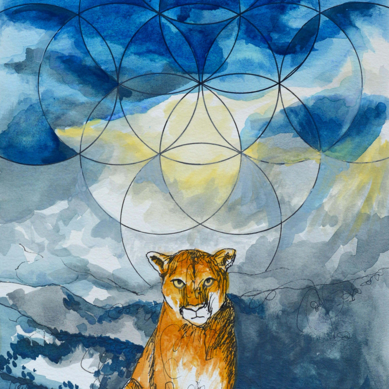 Mountain lion byzvcw