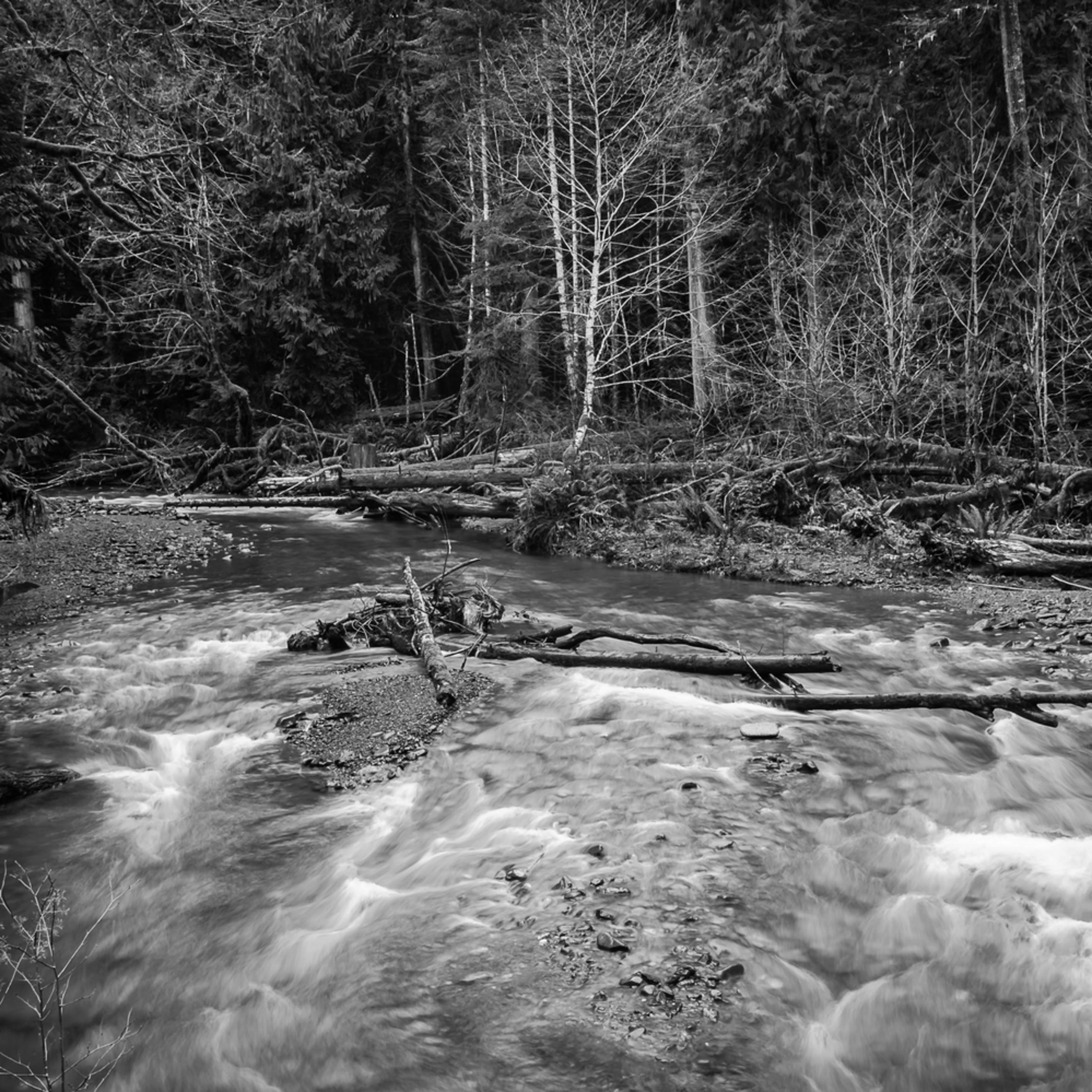 Barnes creek olympic national park washington 2016 lwp5iz
