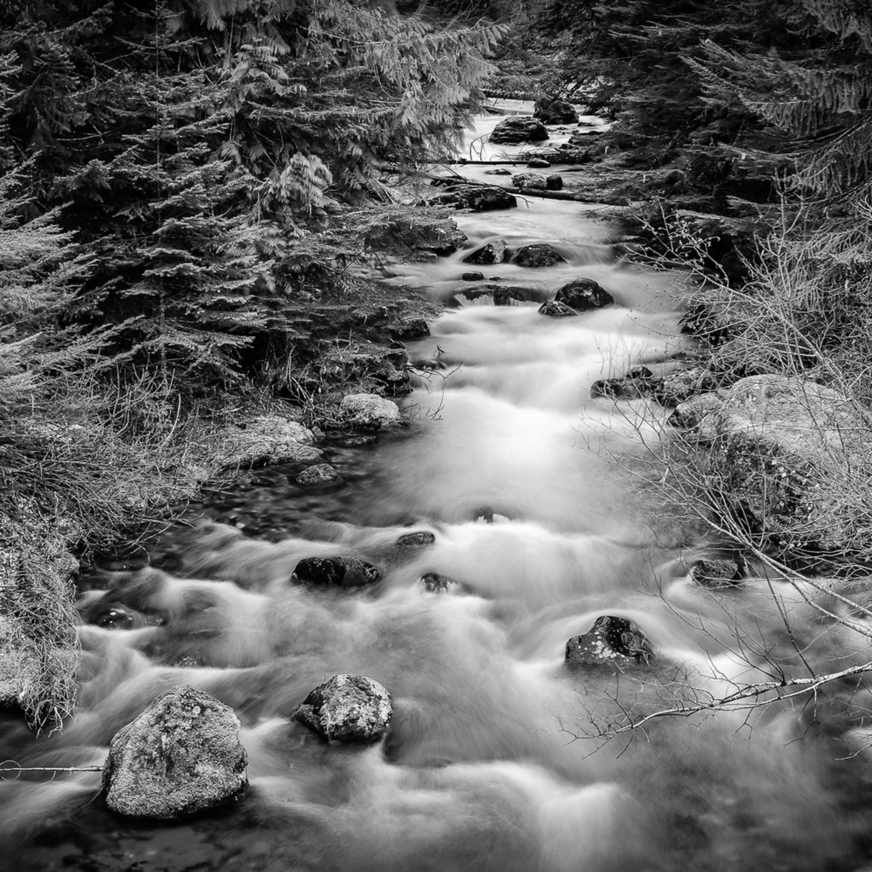 Huckleberry creek washington 2014 d8dv7c