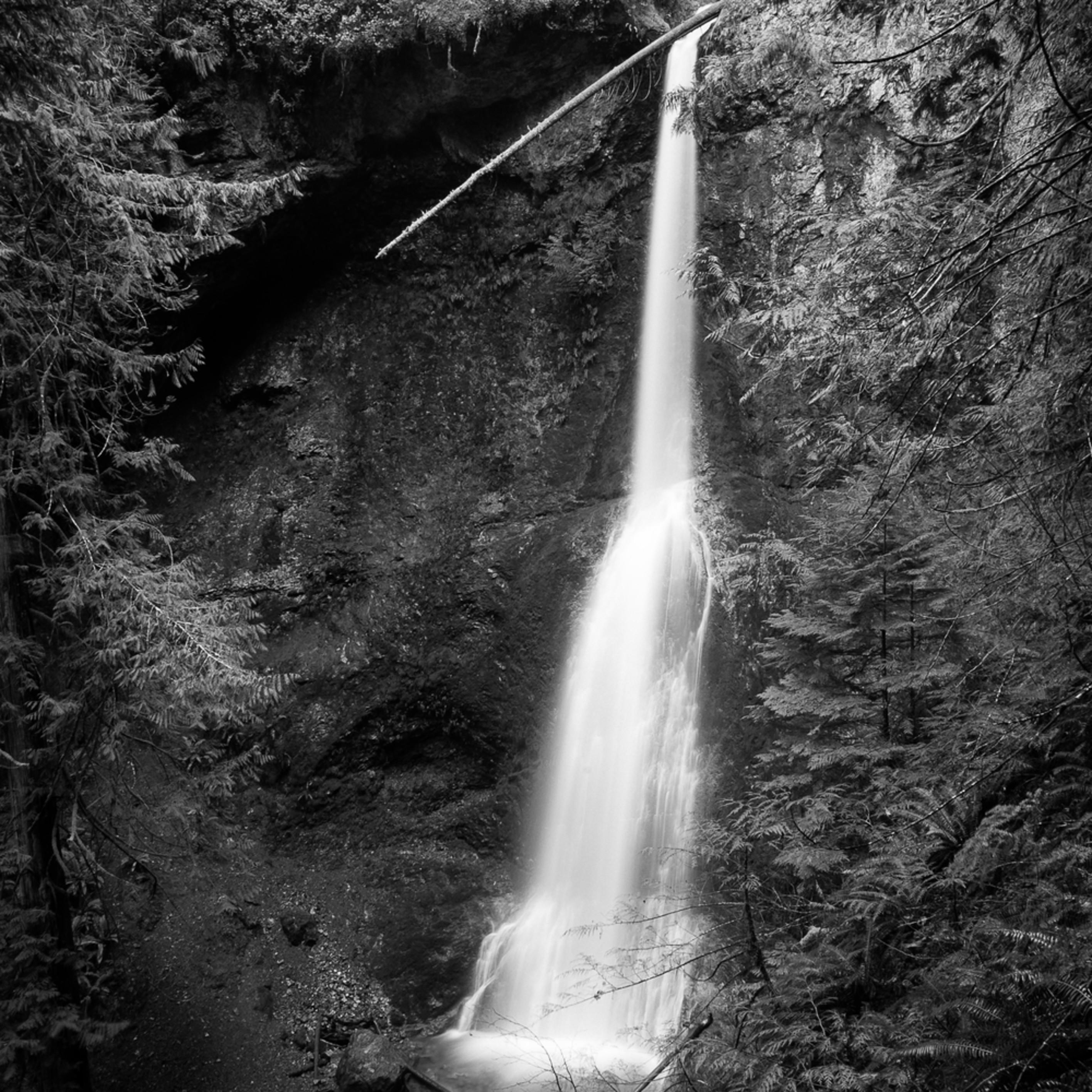 Marymere falls olympic national park washington 2016 bv9bud