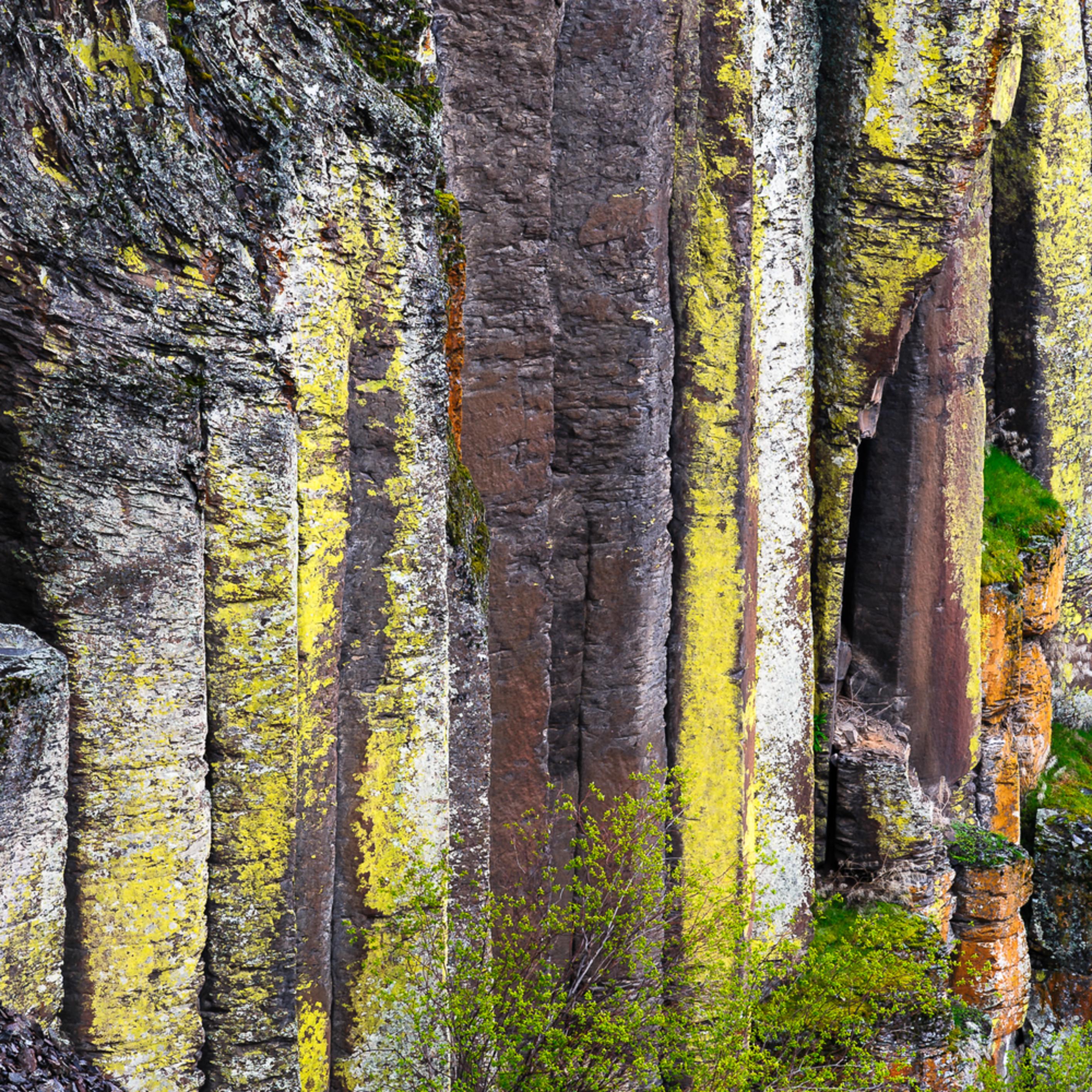 Columnar basalt pothole coulee washington spring 2017 mhdqaz