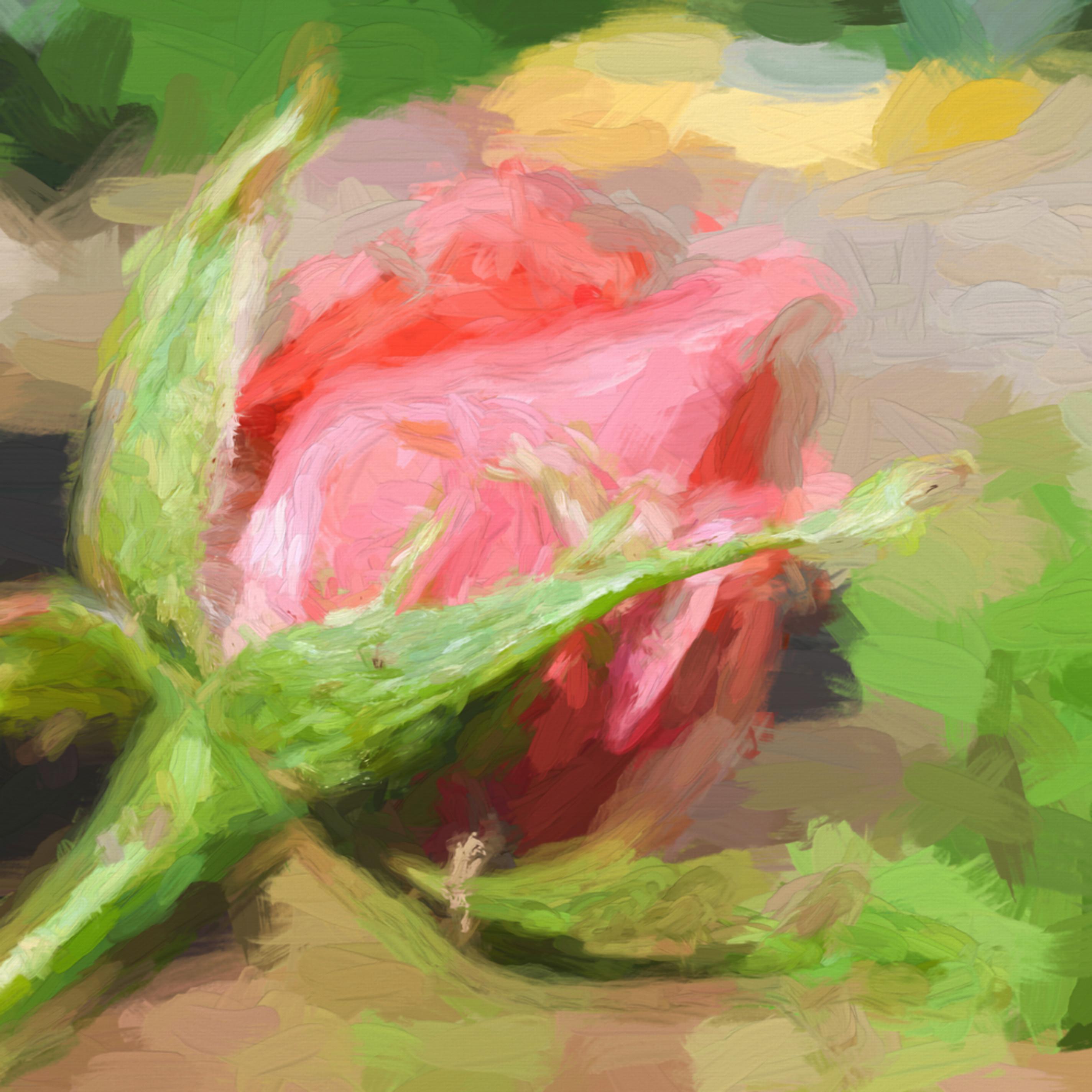 Flower kbjzkl