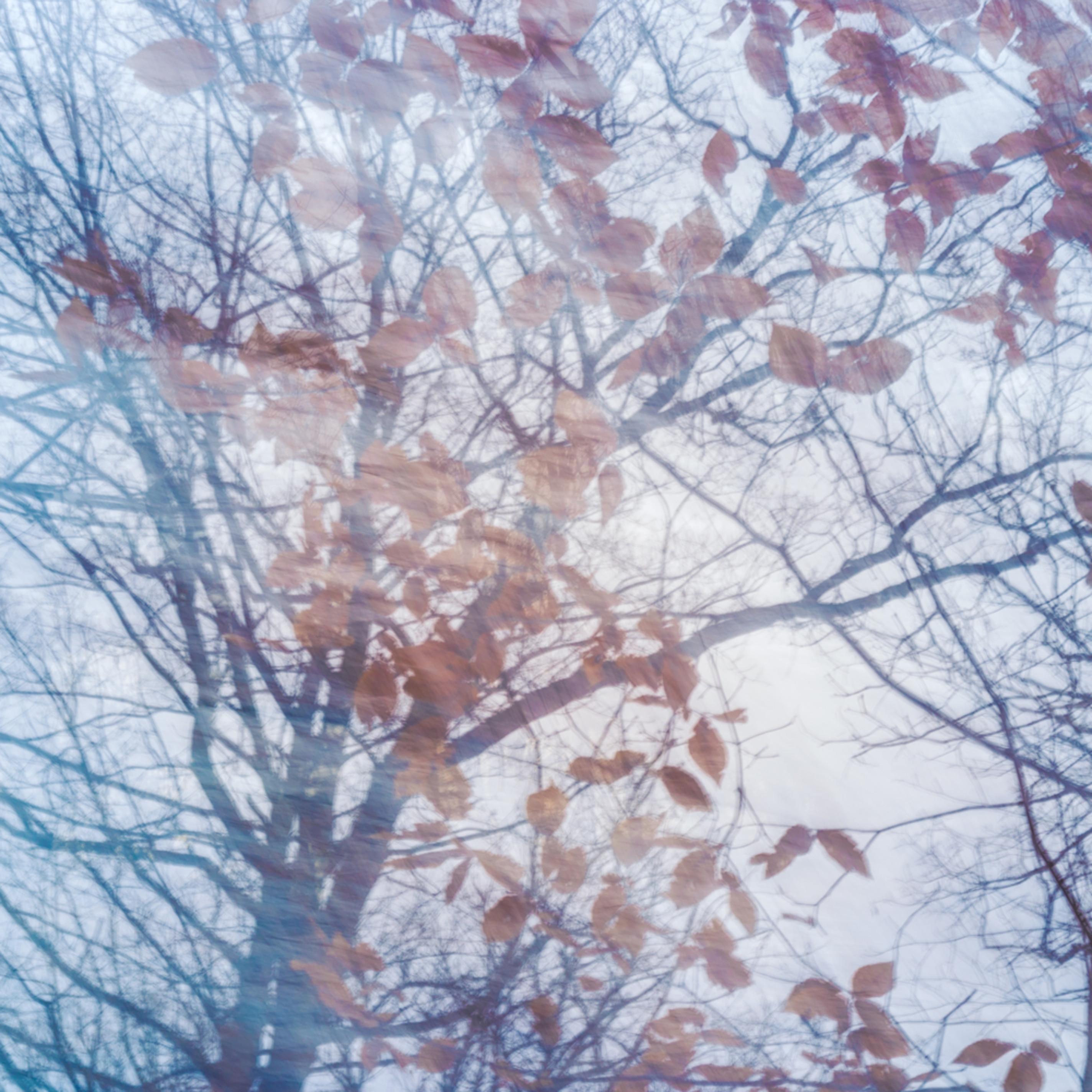 Nature abstract 1494 jwuysa