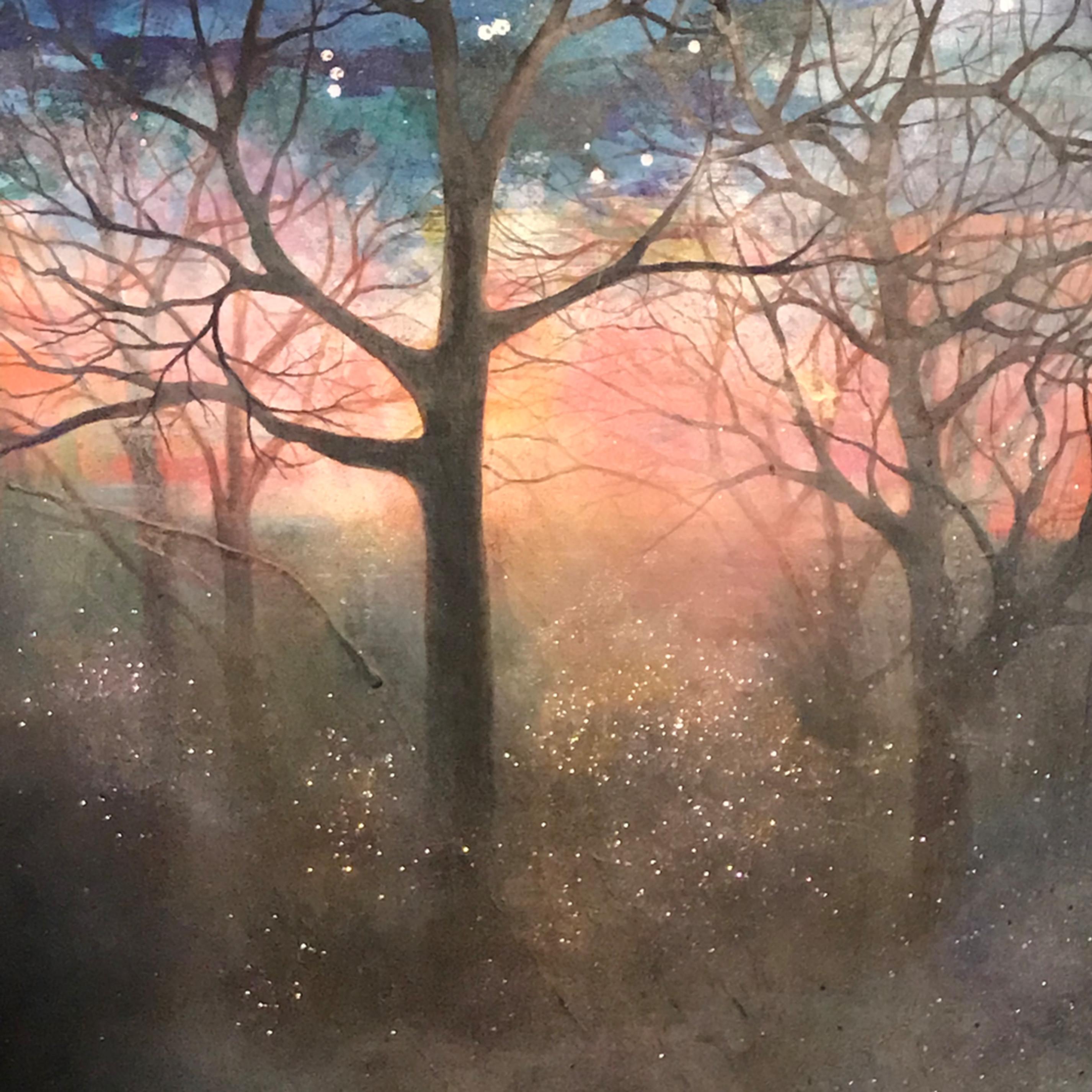 Wilderness of light ou7483