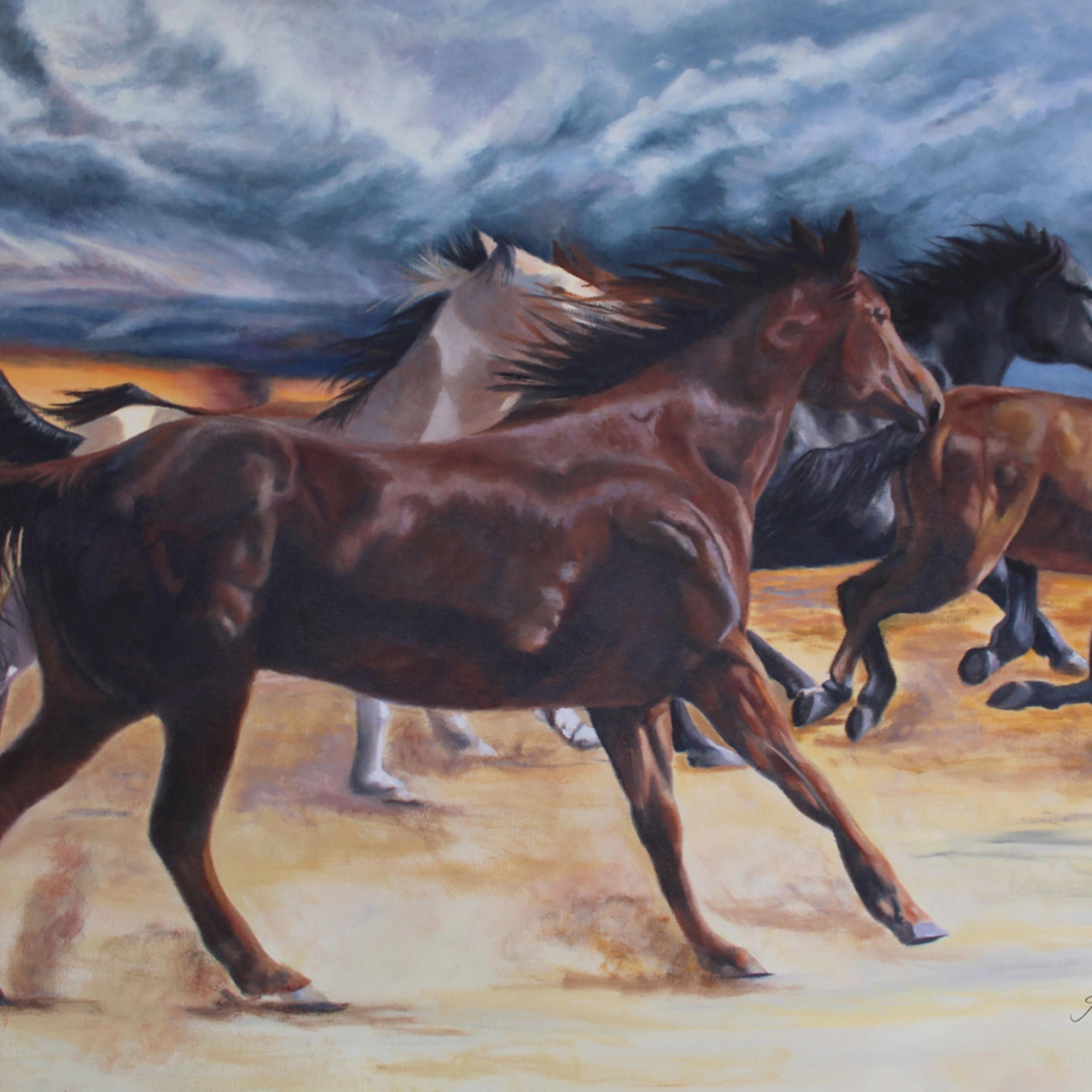 Racing the wind wrhshv