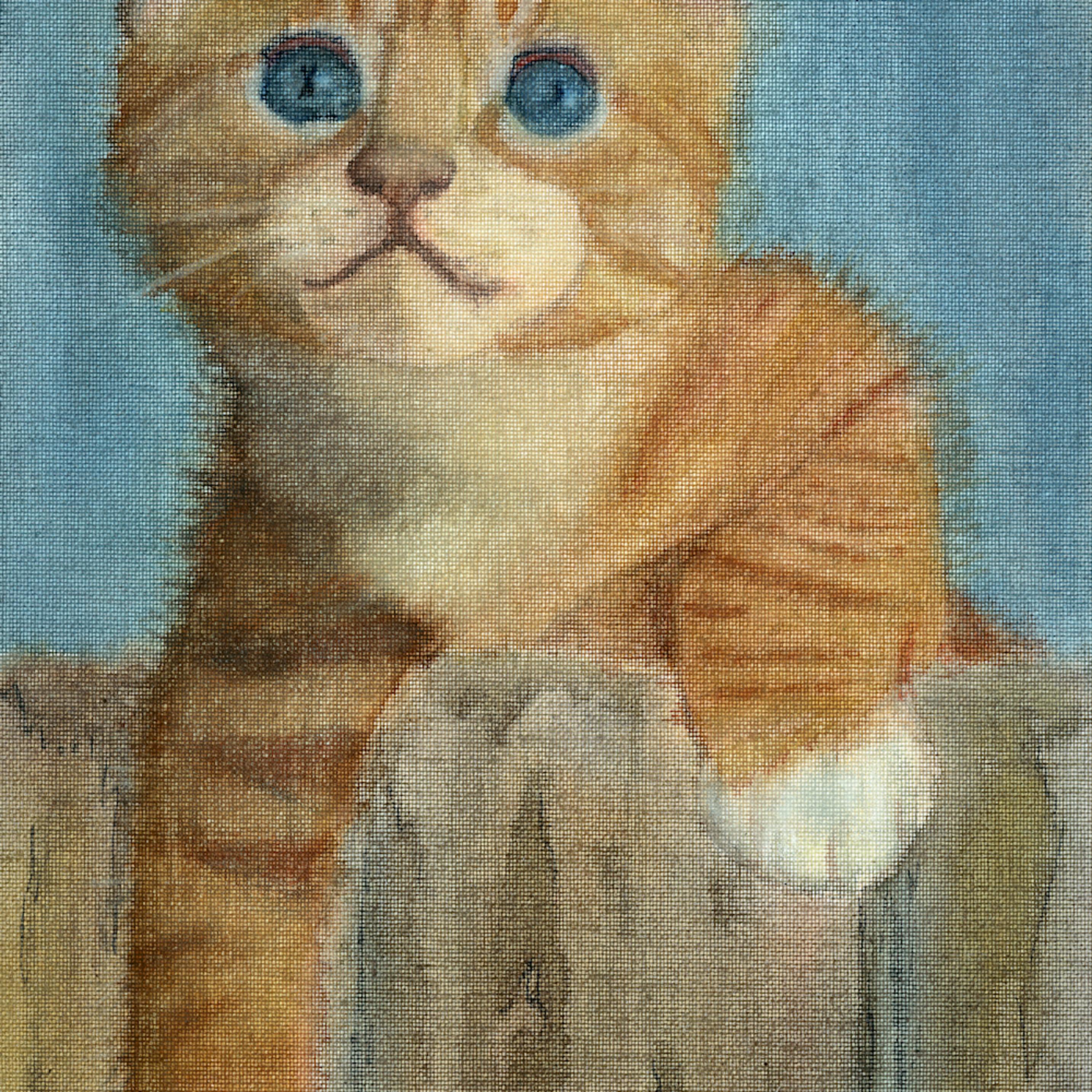 Kitten for michelle sggwzy