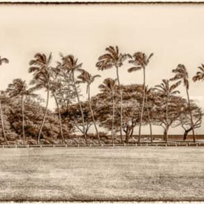 Old baldwin beach park yoxl56