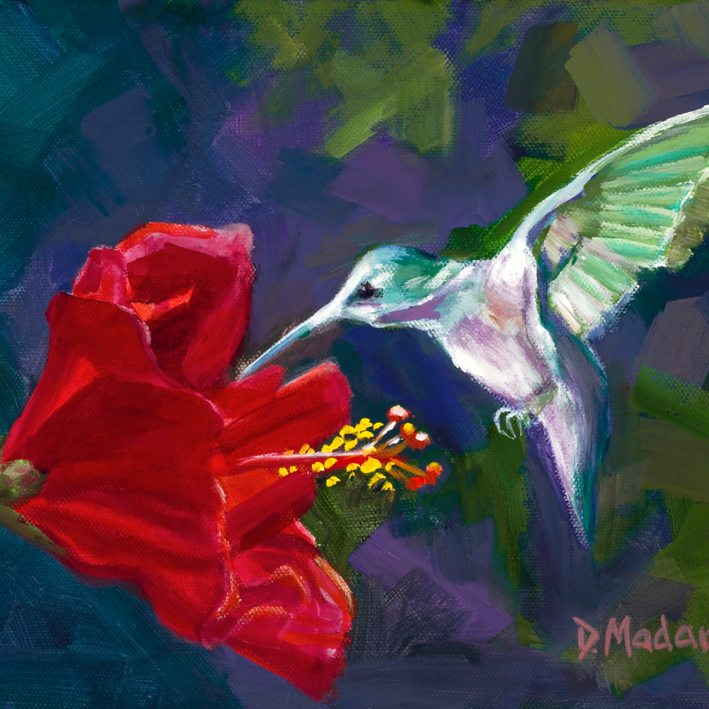 Hummingbird and the hibiscus xxan akax8x