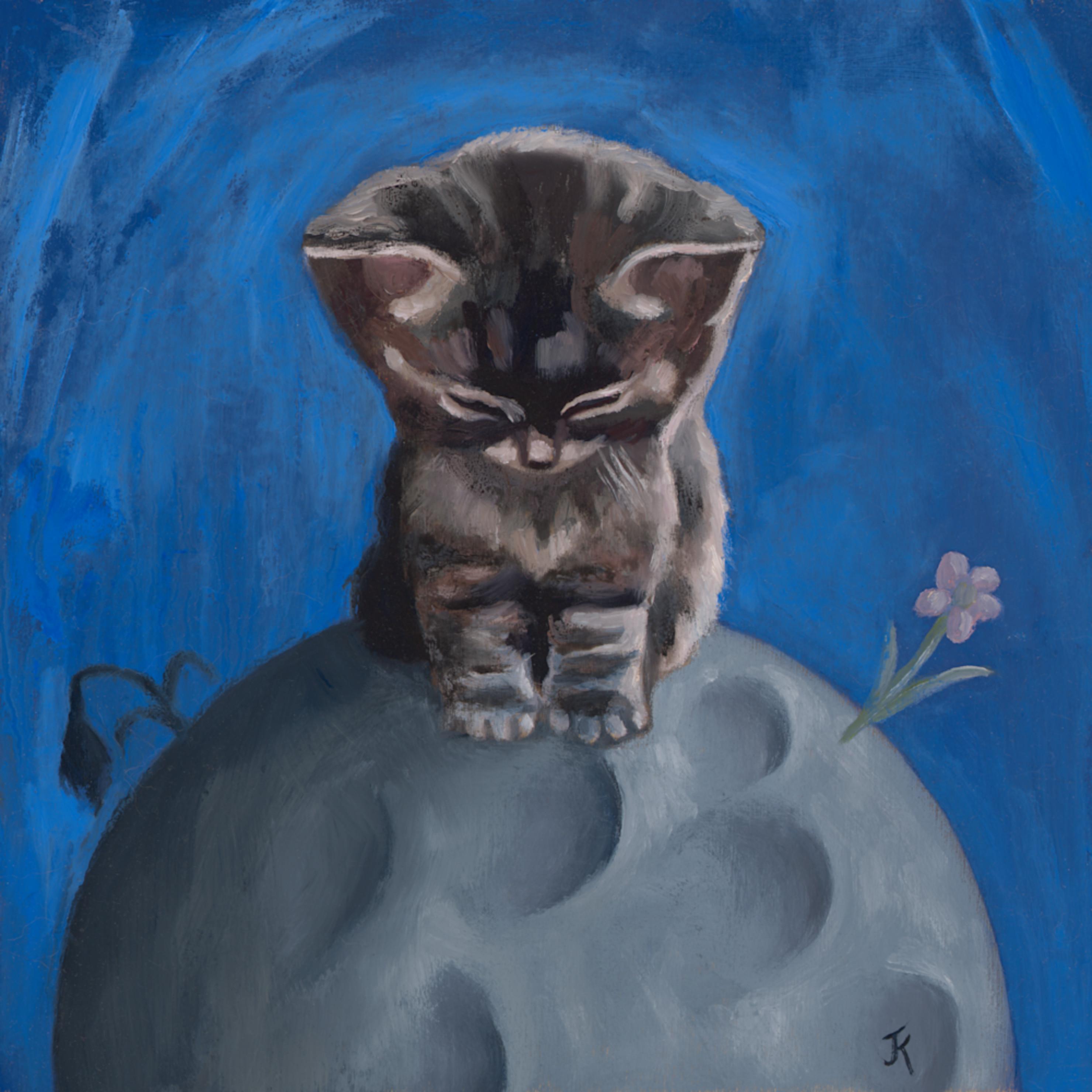 Moon kitty rgb bvm6in