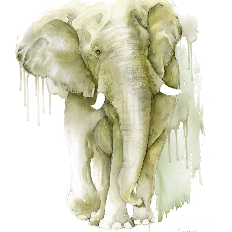 Elephant watercolor su1dzm