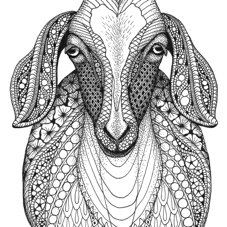 Goat pjhwgi