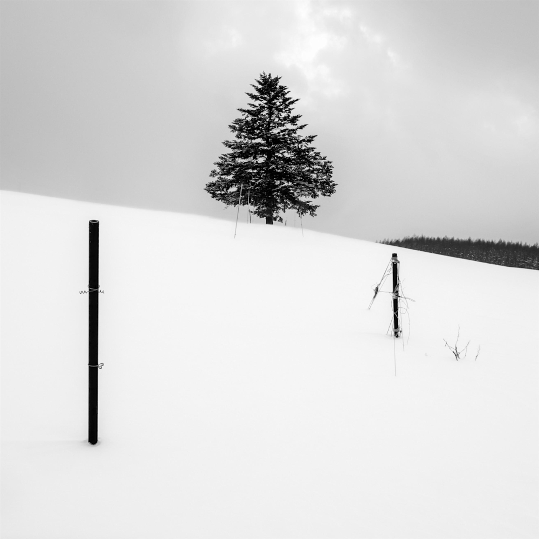 Hokkaido study12 l1xe9a