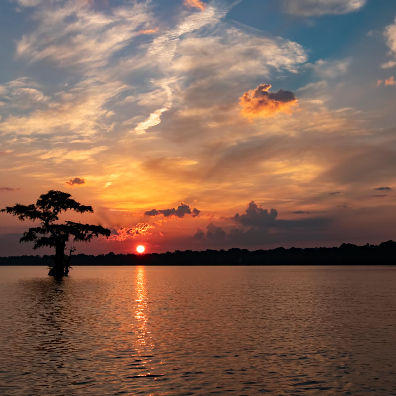 Sunrise lone cypress g  mg 7950 rlt20 clu7ux