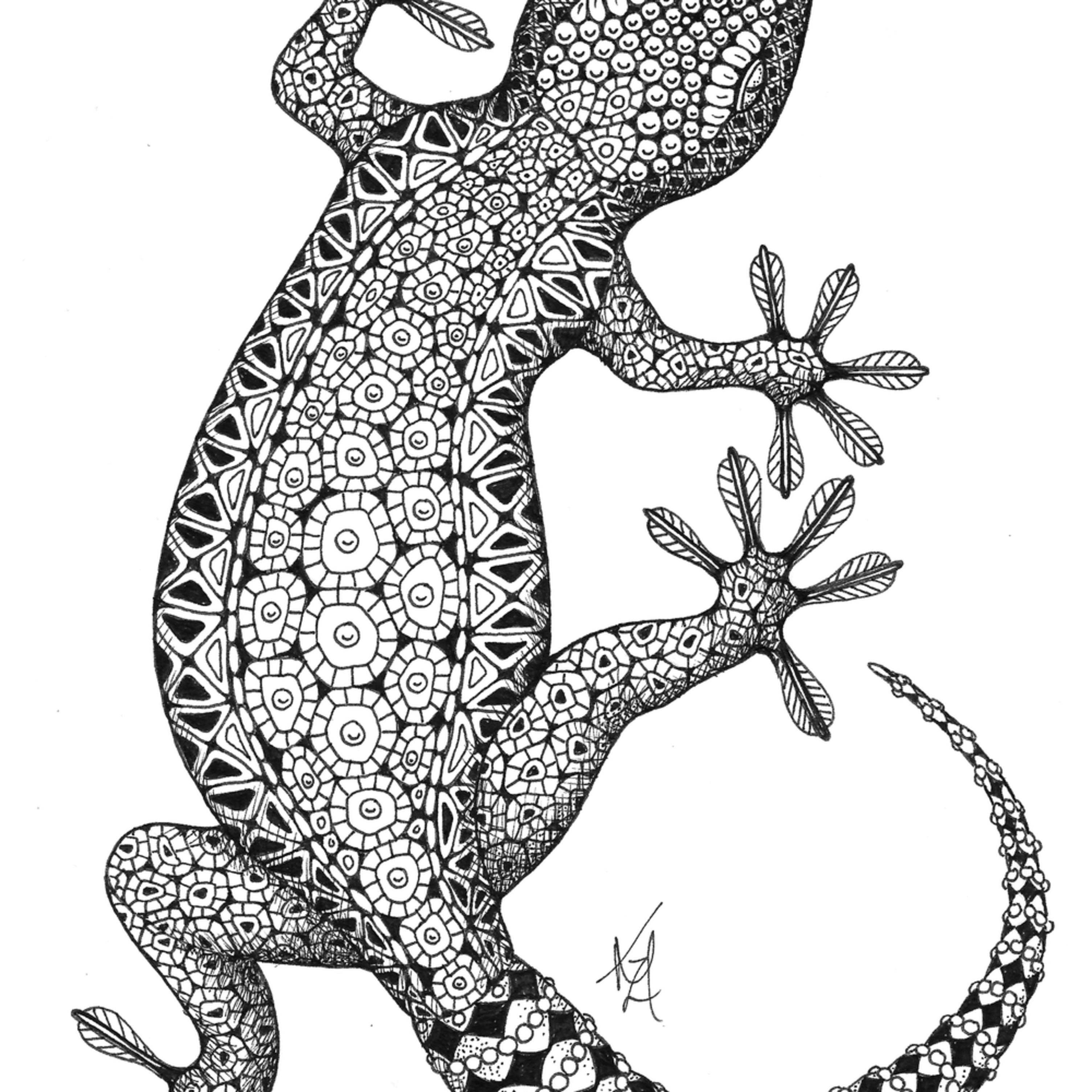 Gecko dck1dy