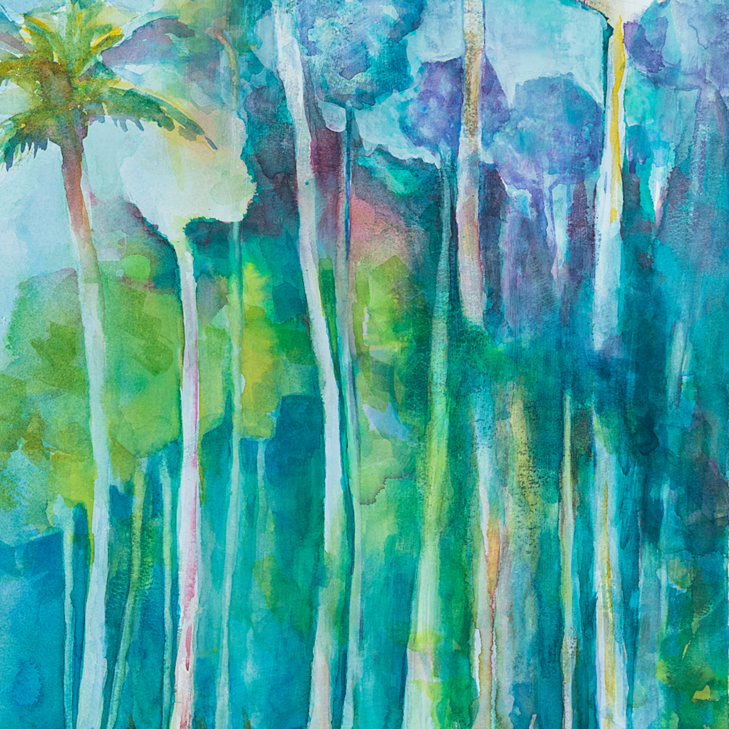 Tall palms aq8e6j