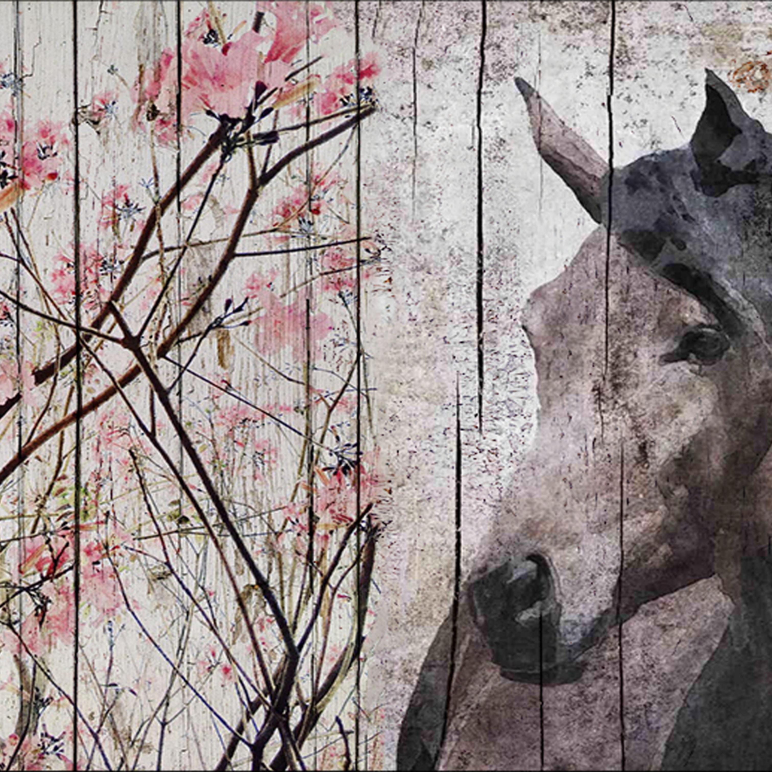 42 x 72 horse le muse rvhxba