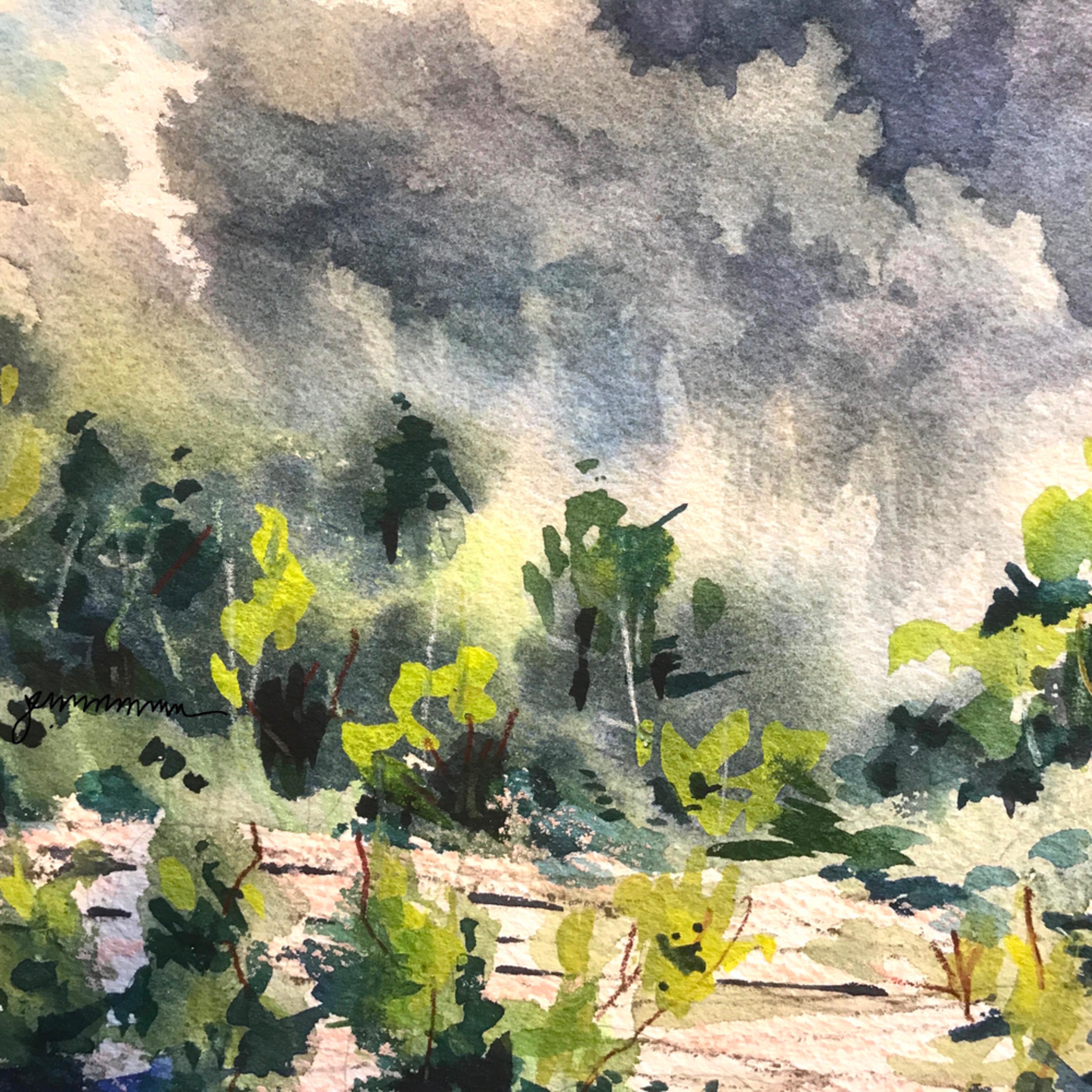 Rain at kelleys island quarry jmmason siglge yezdnd
