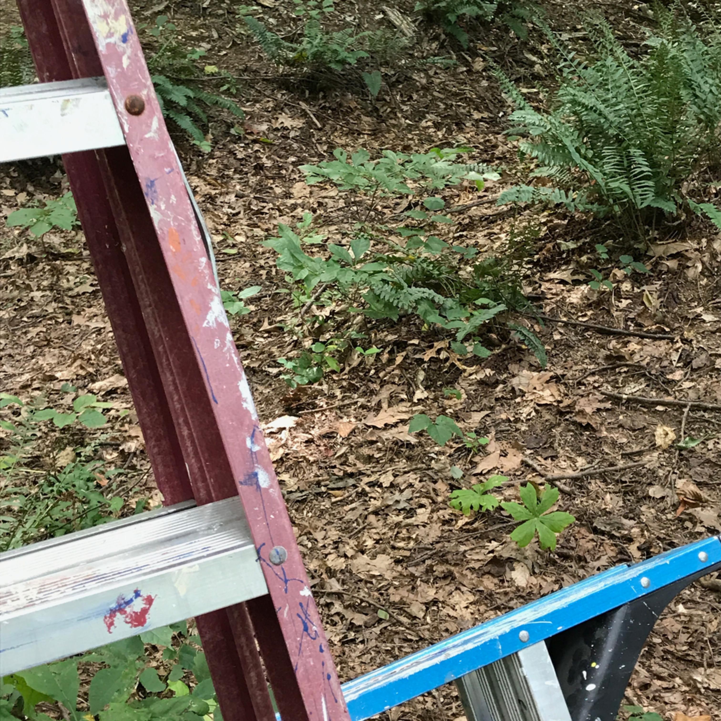 Ladder1 ifyavy