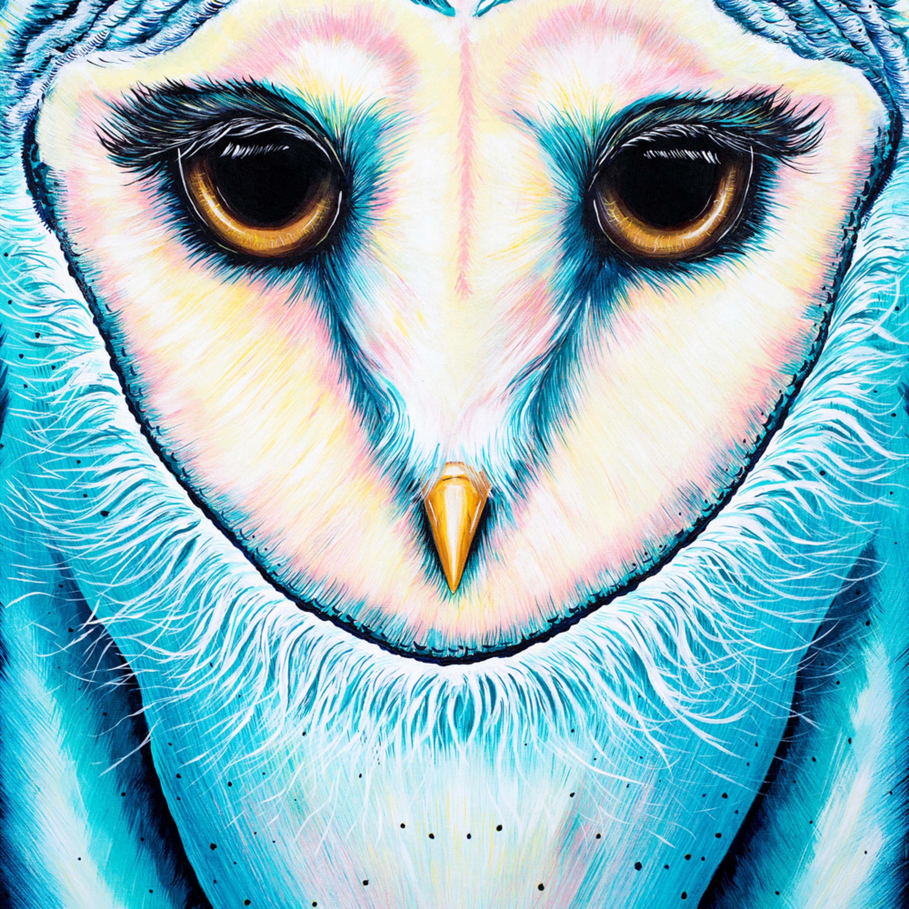 Owl mflsyn