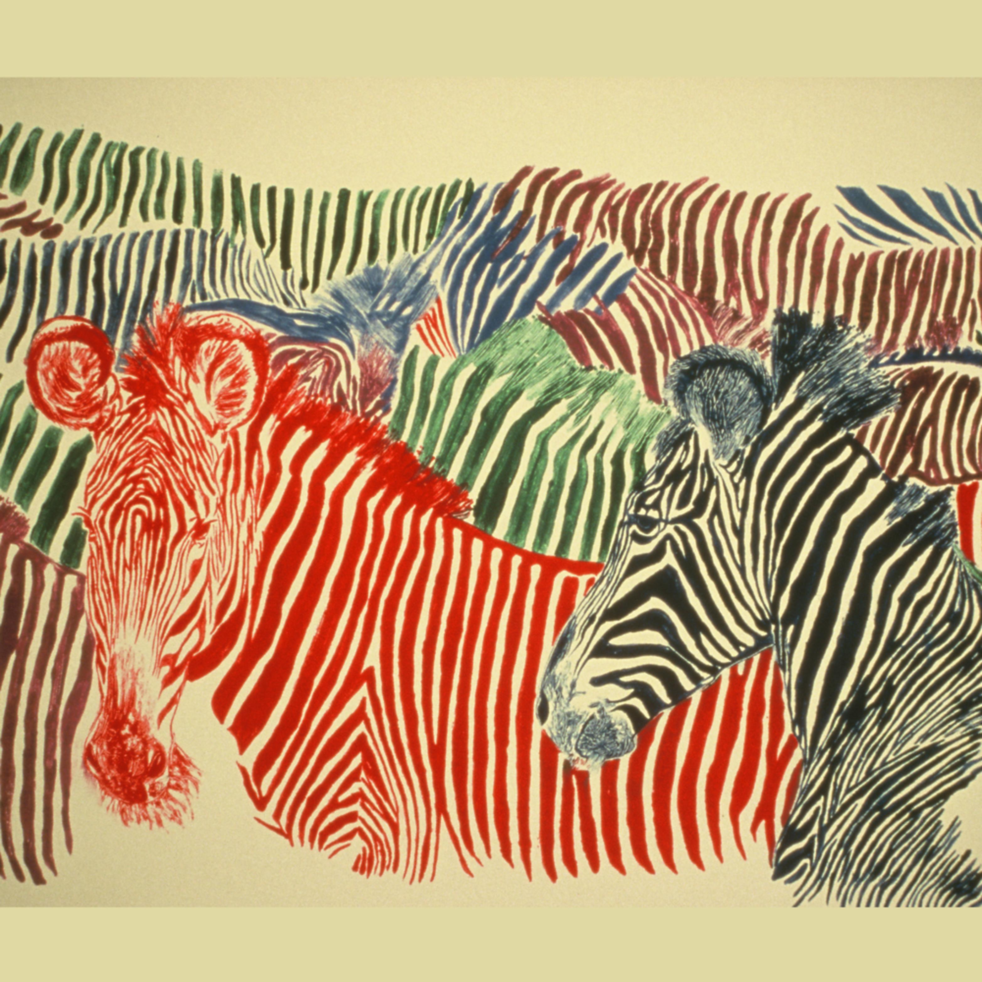 Dee van houten zebra colorstripes monotype gpdybz