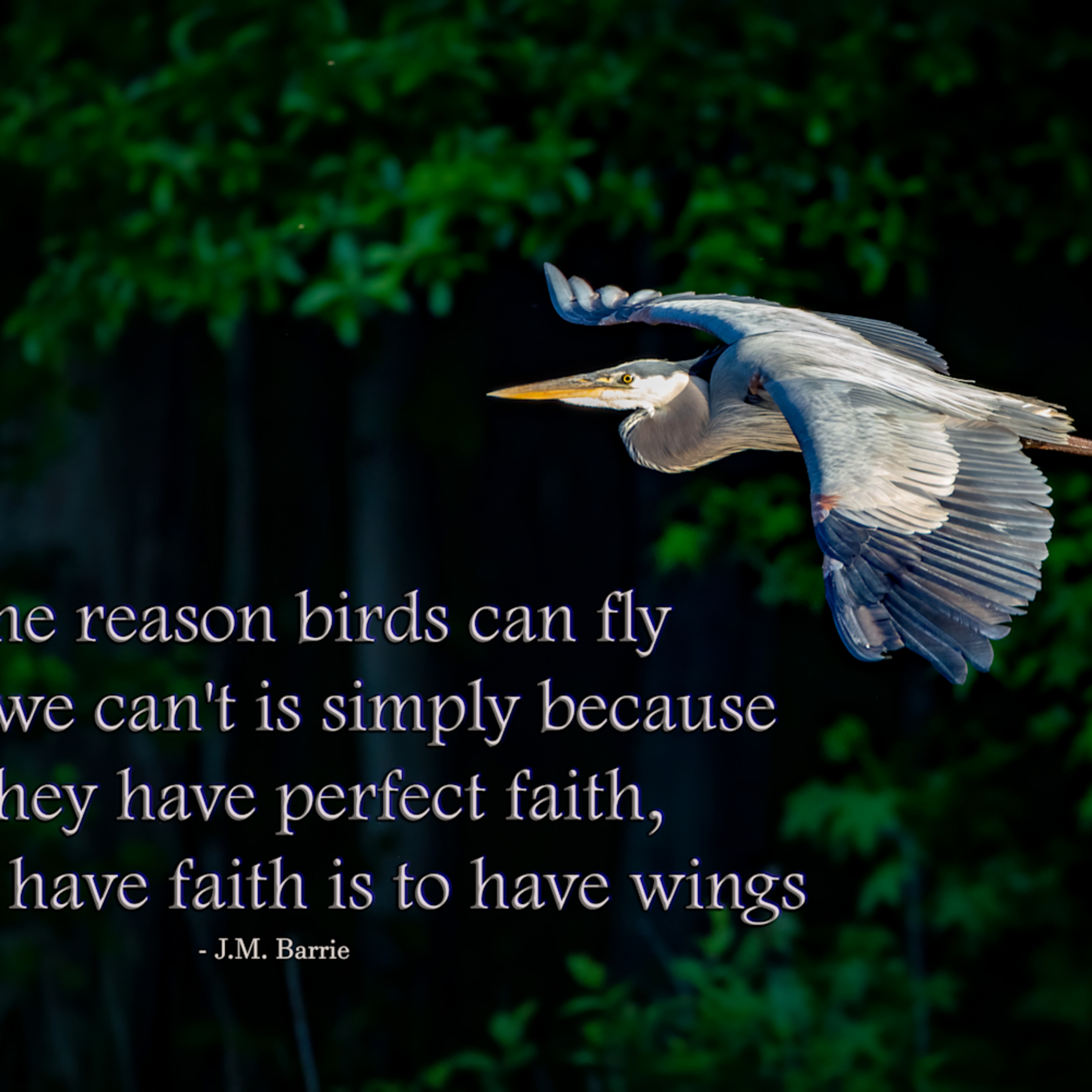 To have faith is to have wings asnrjq