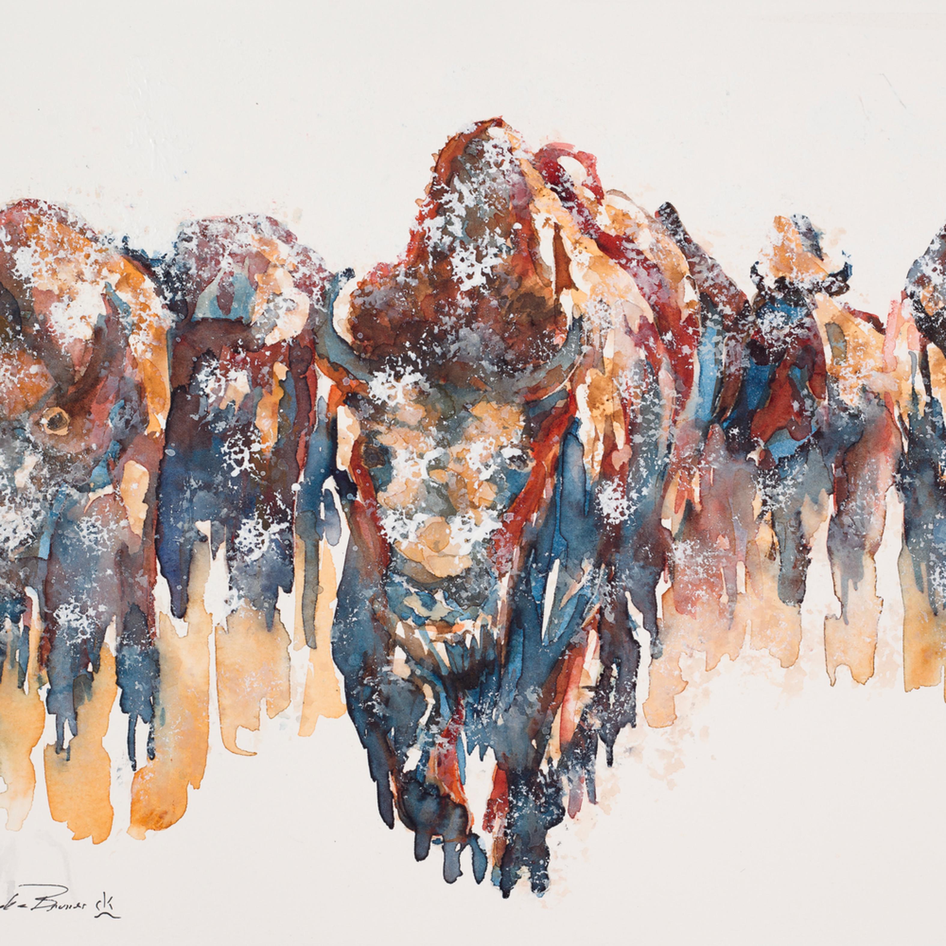 Snow bison hires tpp3ks